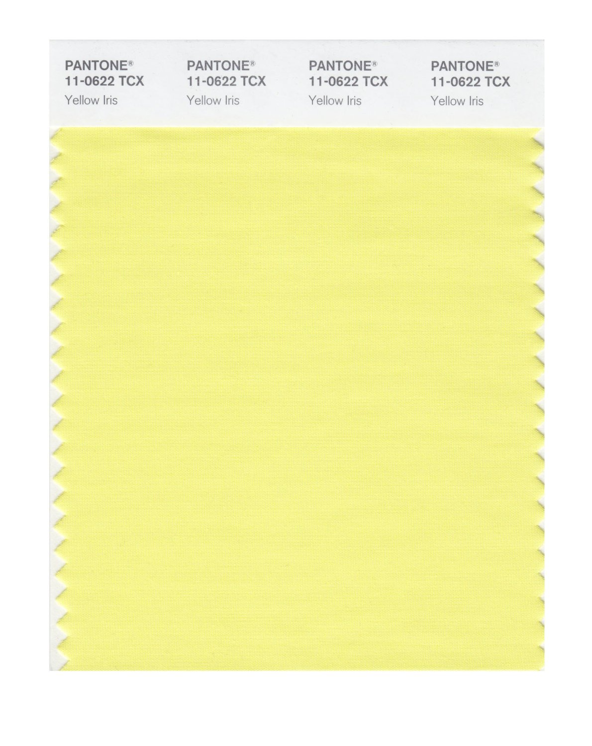 Pantone Smart Swatch 11-0622 Yellow Iris