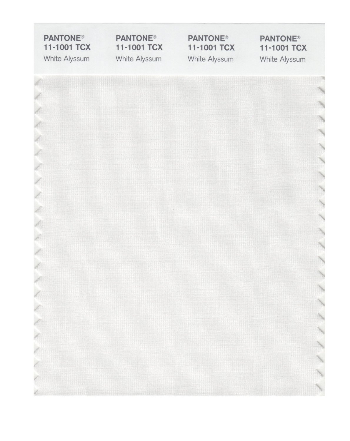 Pantone Smart Swatch 11-1001 White Alyssum