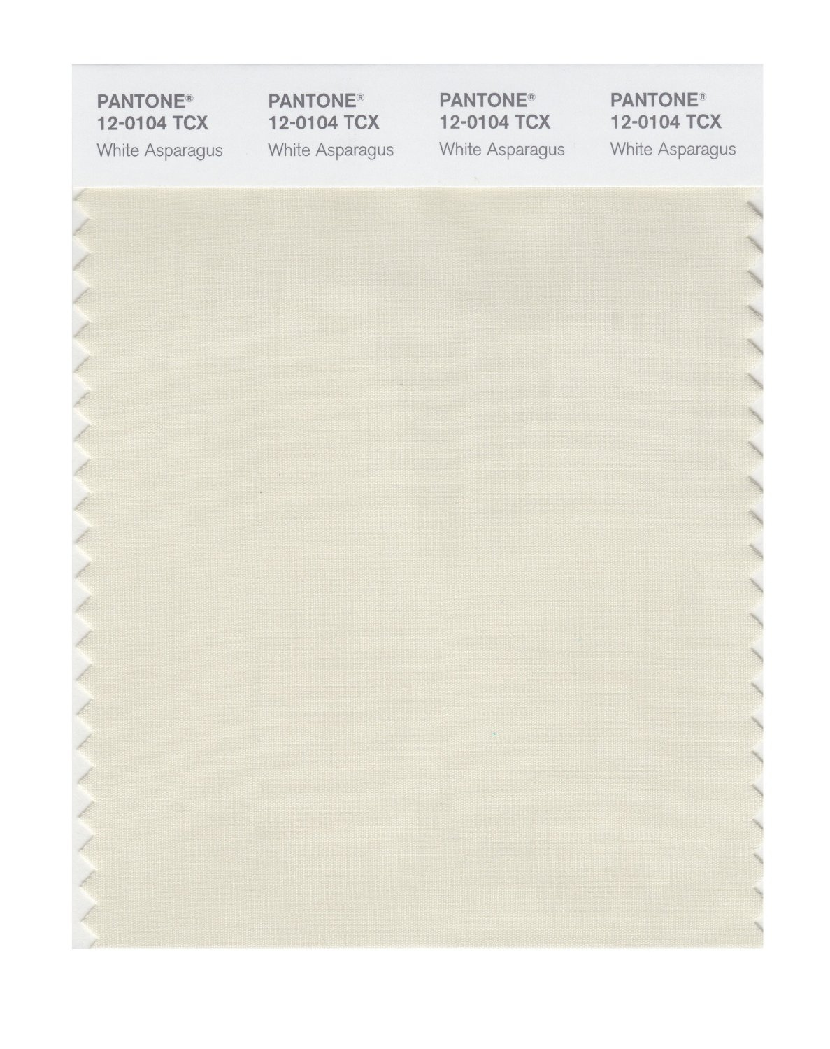 Pantone Smart Swatch 12-0104 White Asparagus