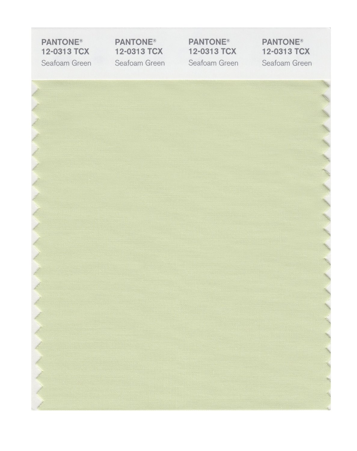 Pantone Smart Swatch 12-0313 Seafoam Green