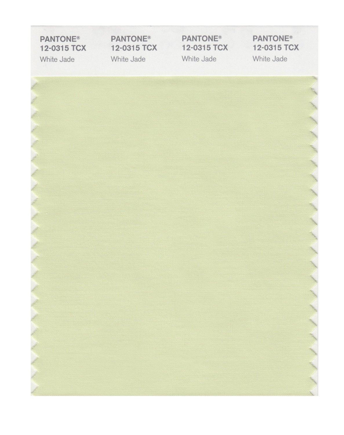 Pantone Smart Swatch 12-0315 White Jade