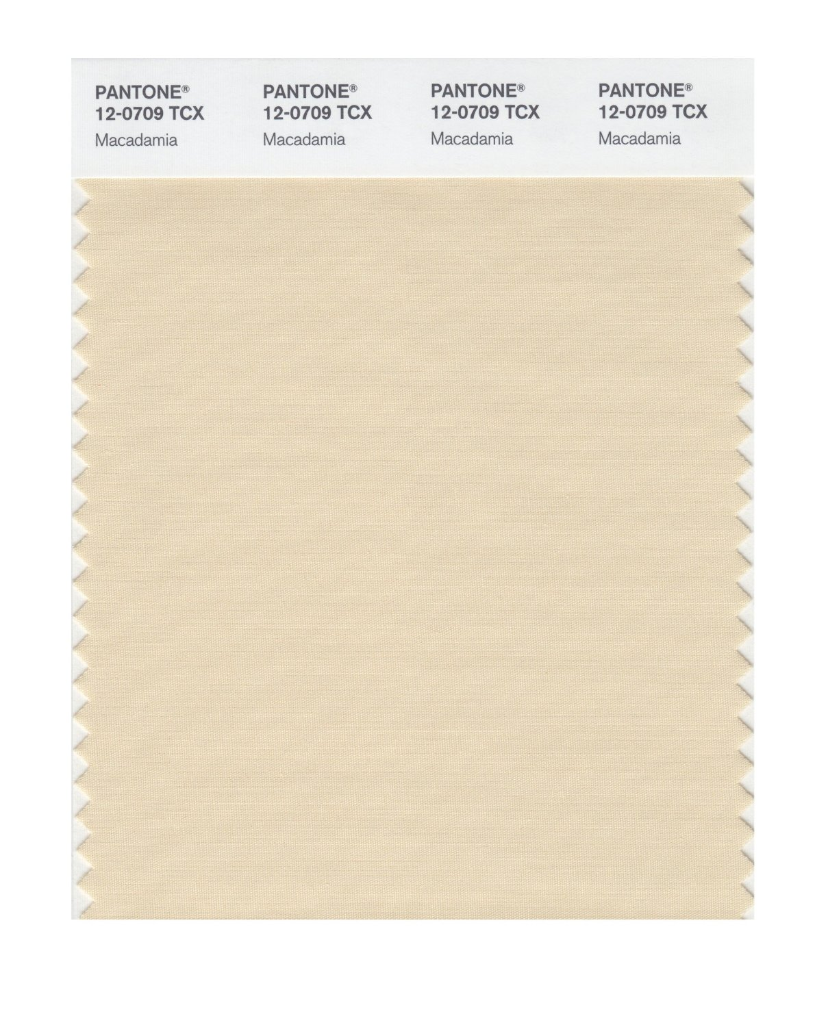 Pantone Smart Swatch 12-0709 Macadamia