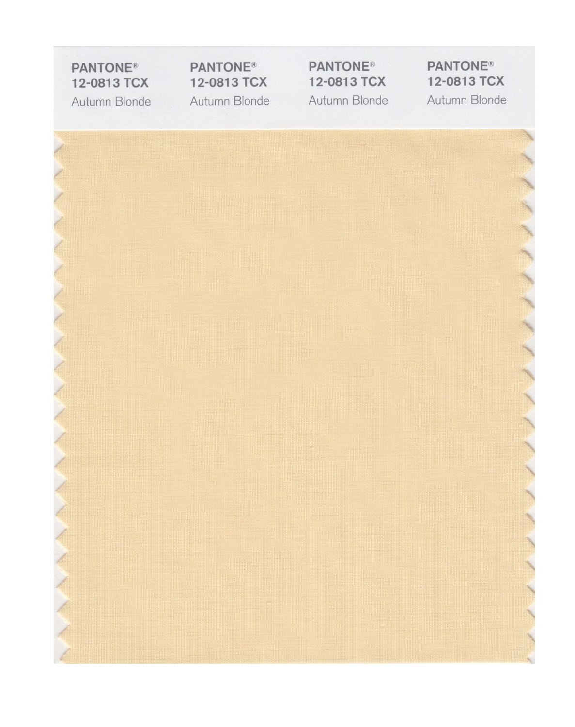 Pantone Smart Swatch 12-0813 Autumn Blonde