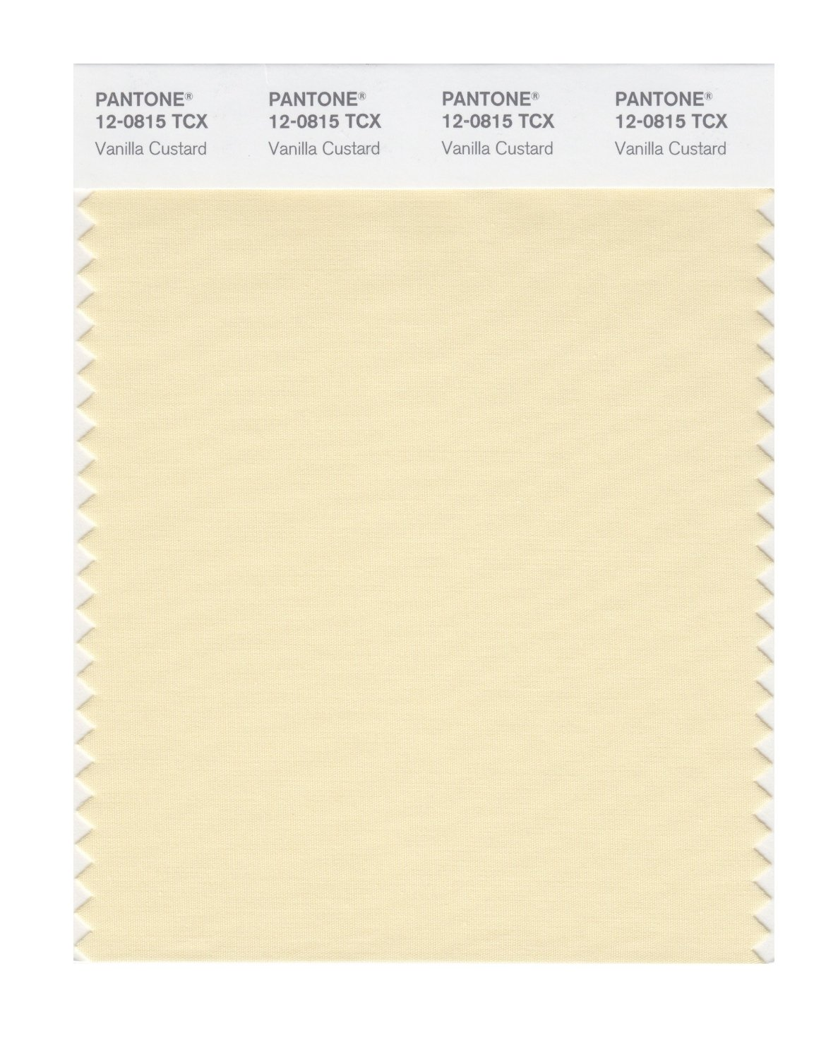 Pantone Smart Swatch 12-0815 Vanilla Custard