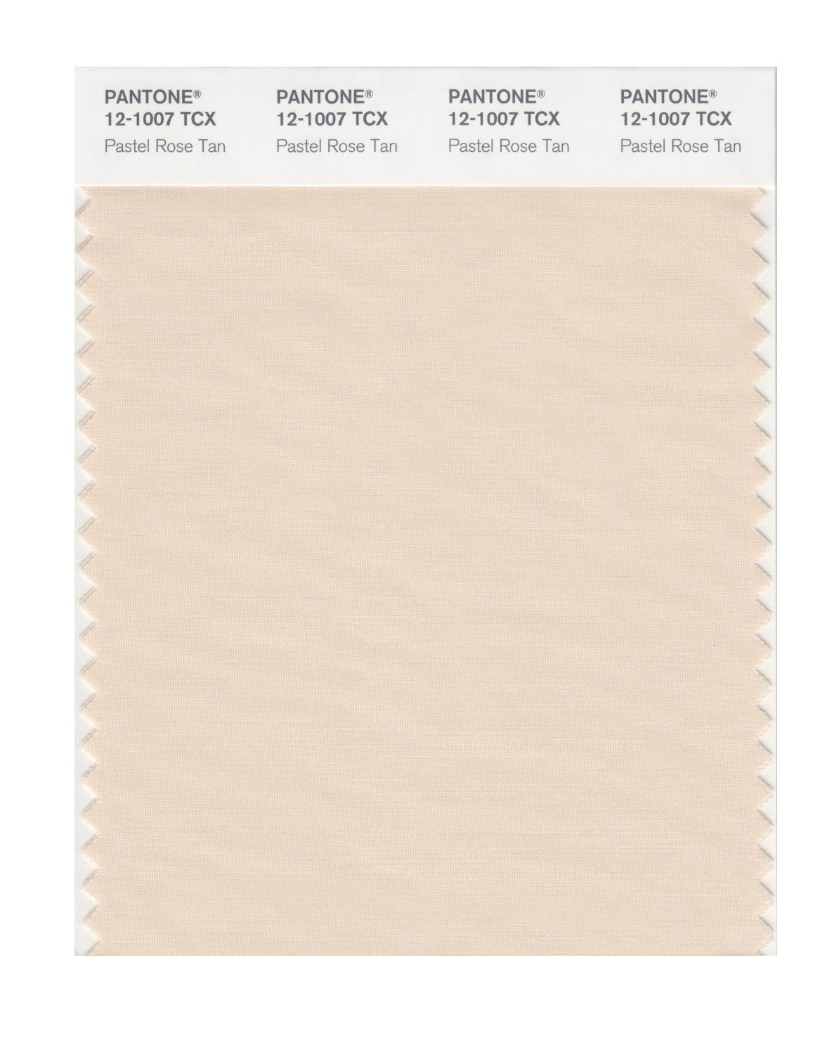 Pantone Smart Swatch 12-1007 Pastel Rose Tan