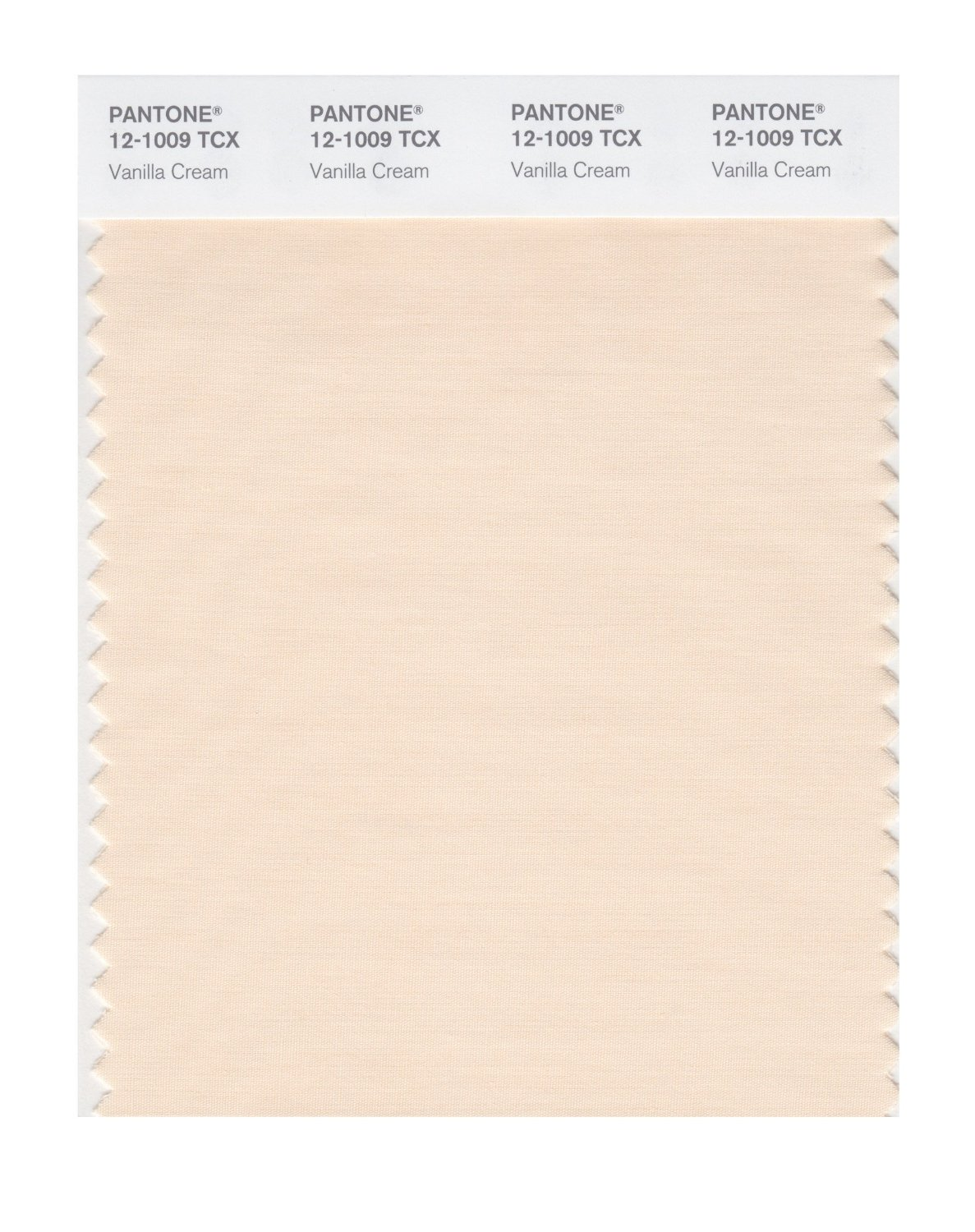 Pantone Smart Swatch 12-1009 Vanilla Cream