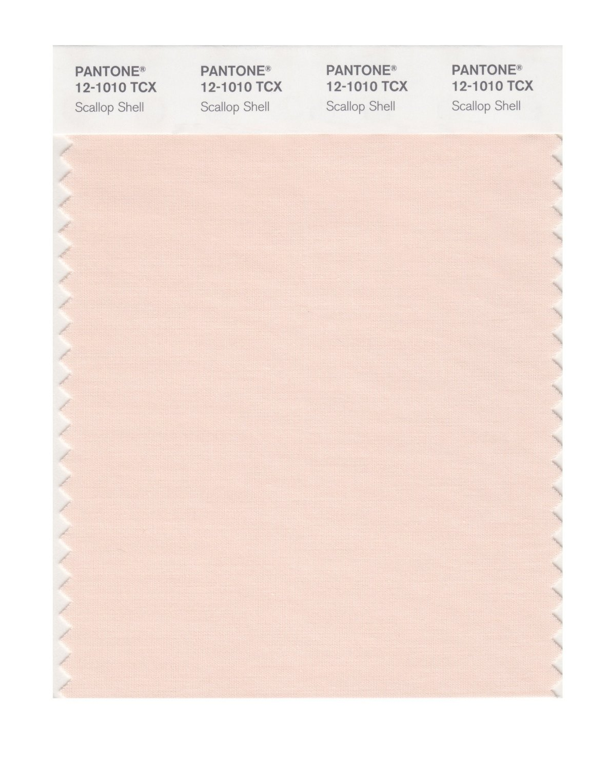 Pantone Smart Swatch 12-1010 Scallop Shell