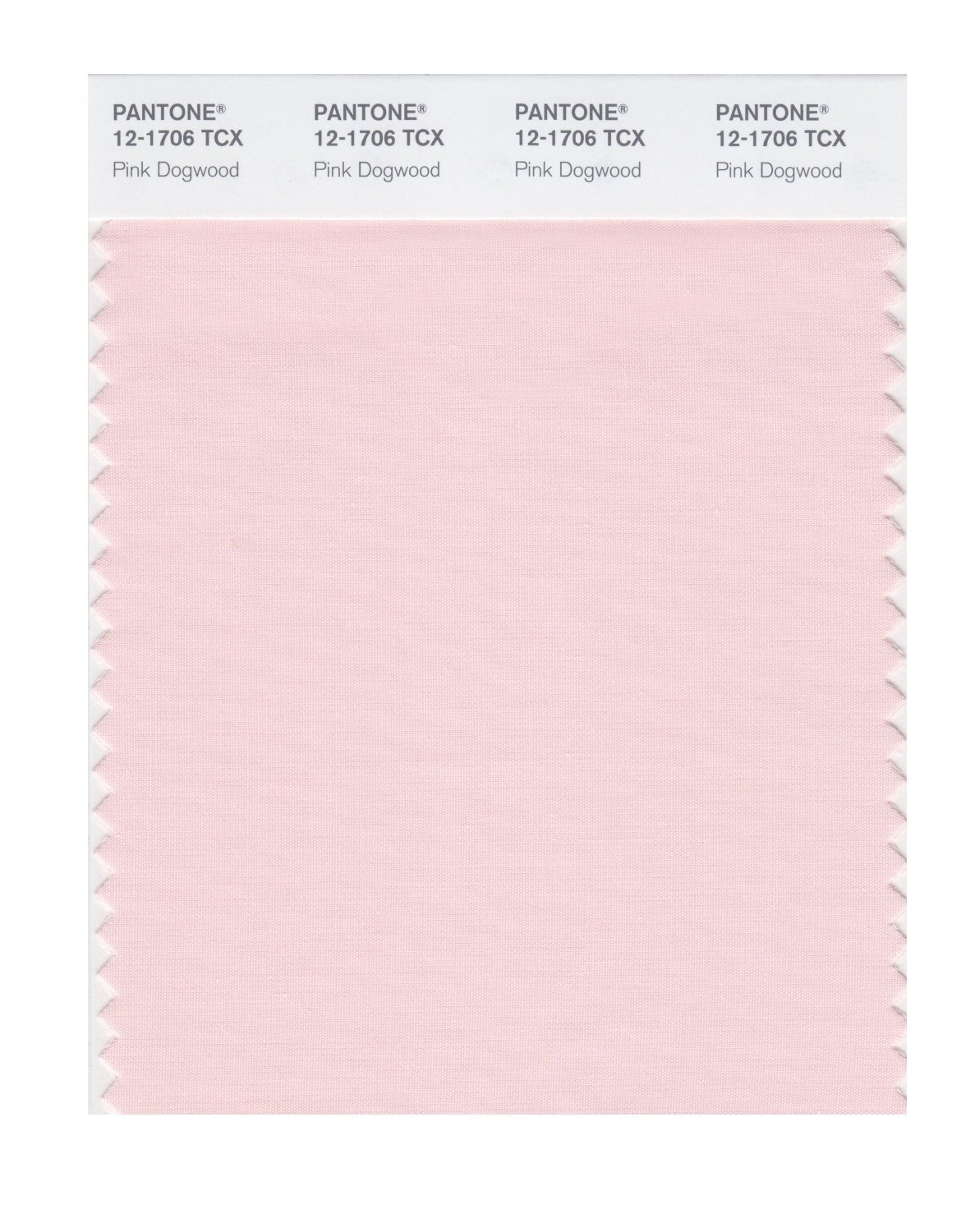 Pantone Smart Swatch 12-1706 Pink Dogwood