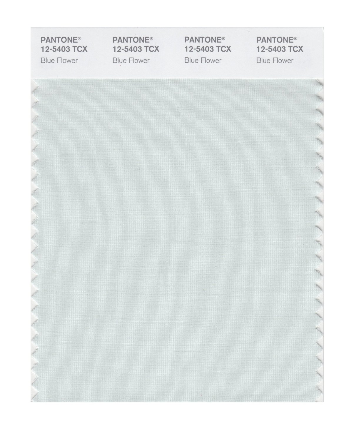 Pantone Smart Swatch 12-5403 Blue Flower