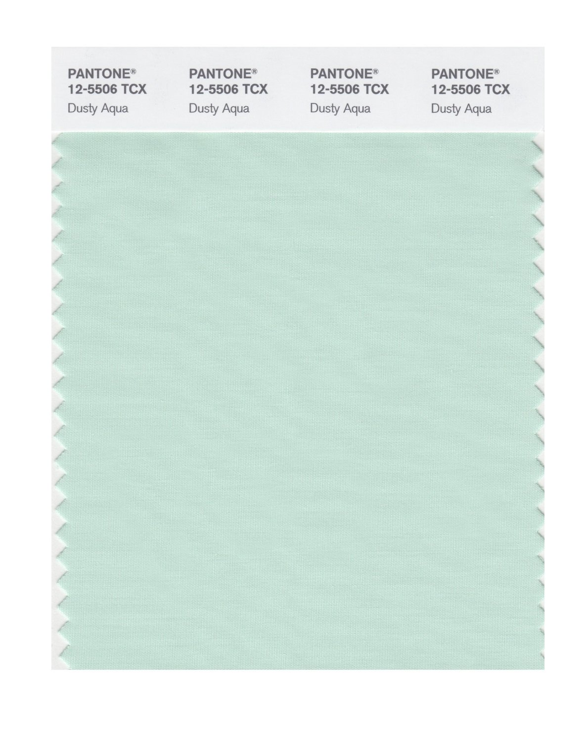 Pantone Smart Swatch 12-5506 Dusty Aqua