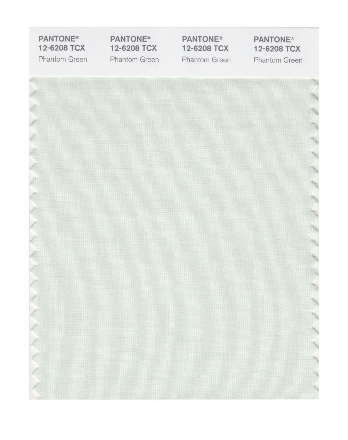 Pantone Smart Swatch 12-6208 Phantom Green