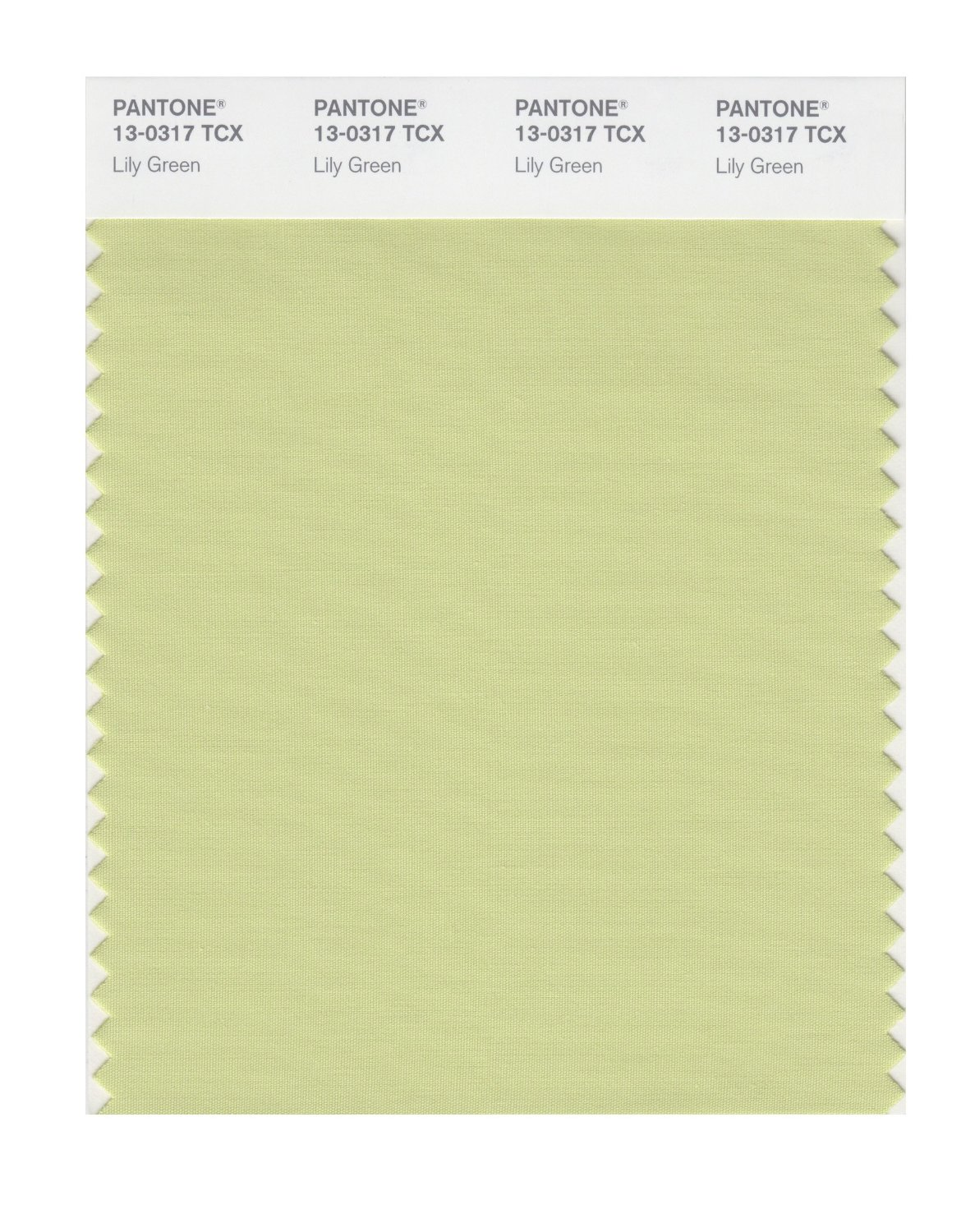 Pantone Smart Swatch 13-0317 Lily Green