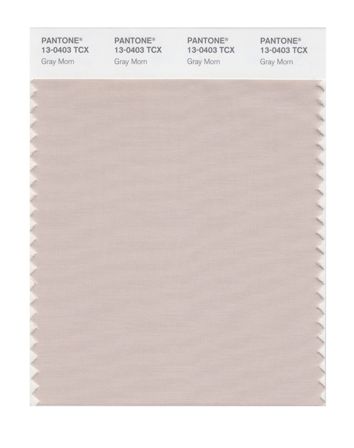 Pantone Smart Swatch 13-0403 Gray Morn