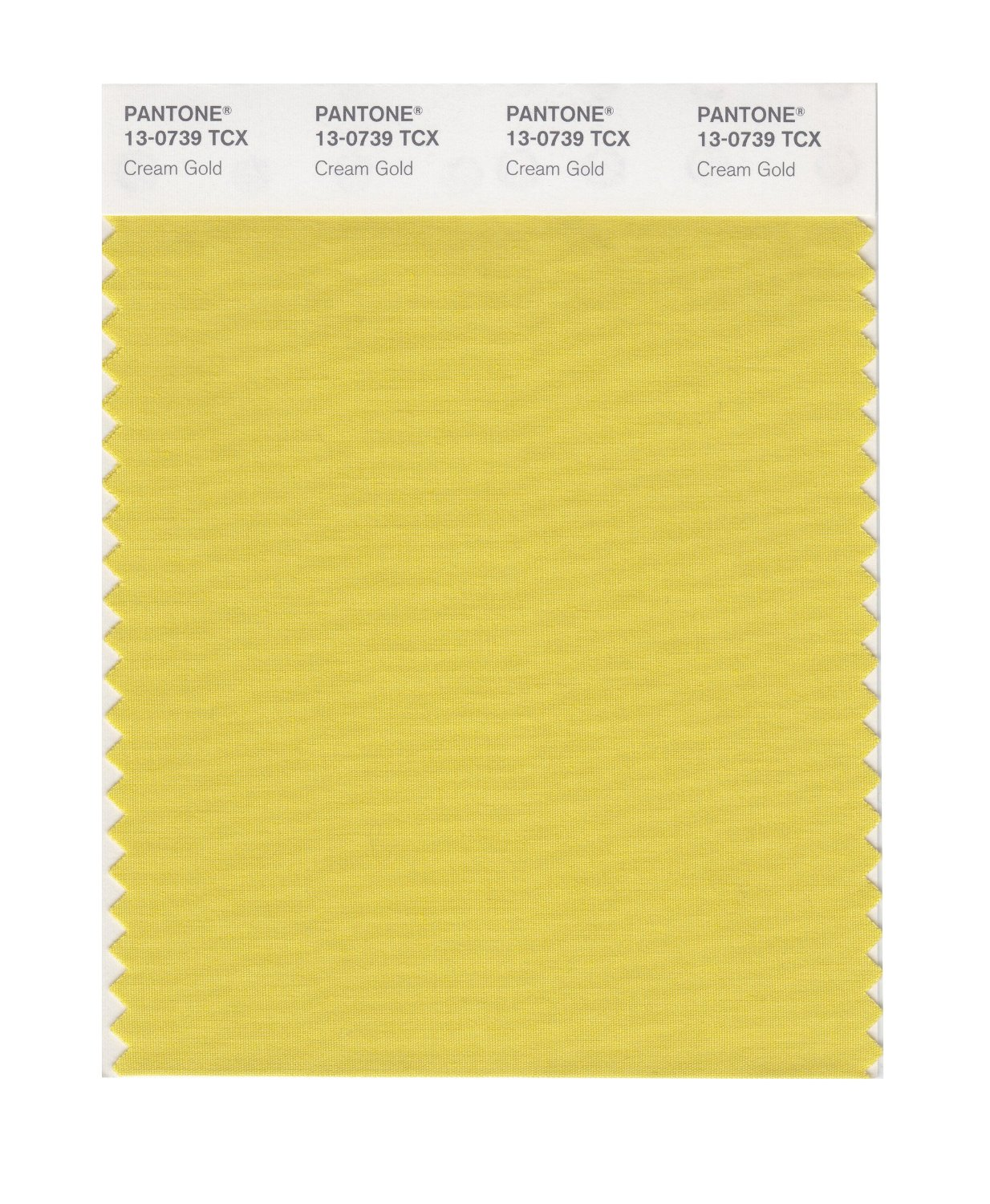 Pantone Smart Swatch 13-0739 Cream Gold