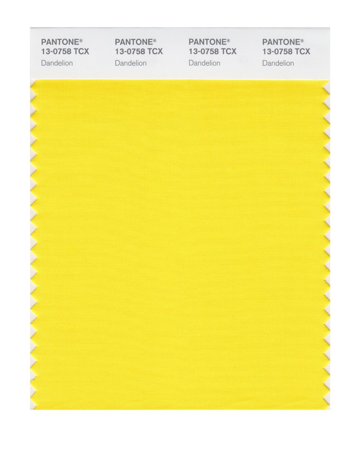 Pantone Smart Swatch 13-0758 Dandelion
