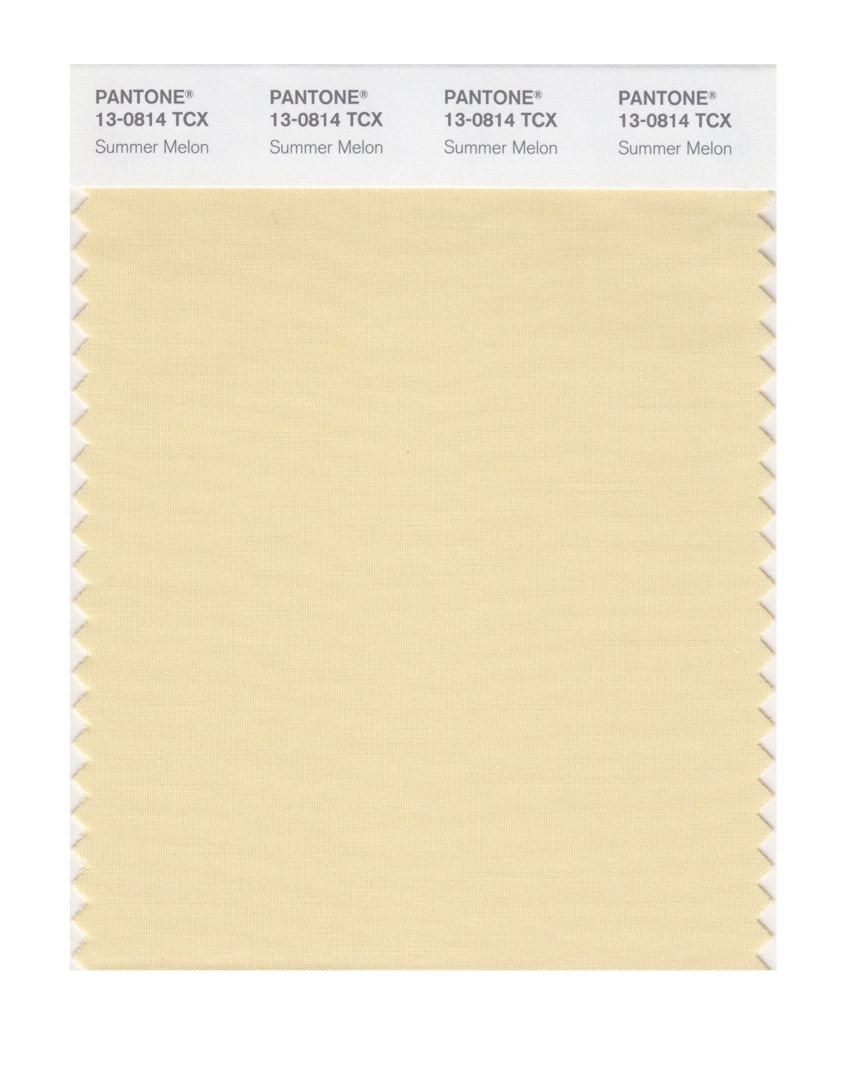 Pantone Smart Swatch 13-0814 Summer Melon