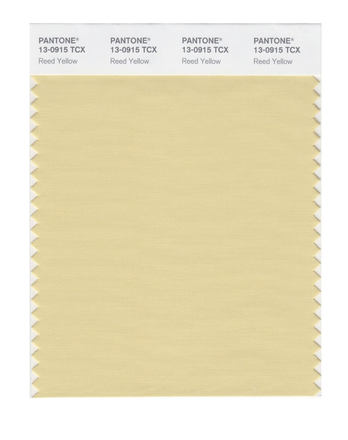 Pantone Smart Swatch 13-0915 Reed Yellow