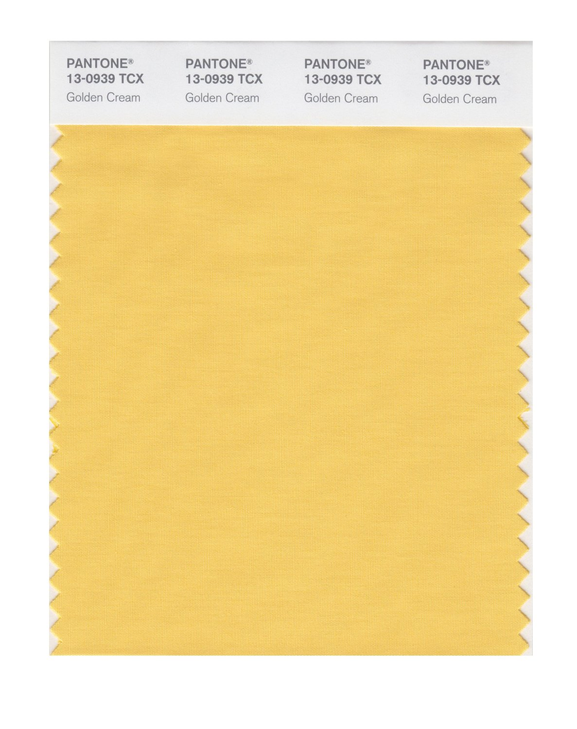 Pantone Smart Swatch 13-0939 Golden Cream