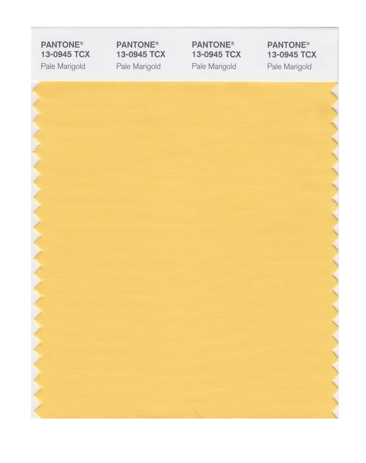Pantone Smart Swatch 13-0945 Pale Marigold