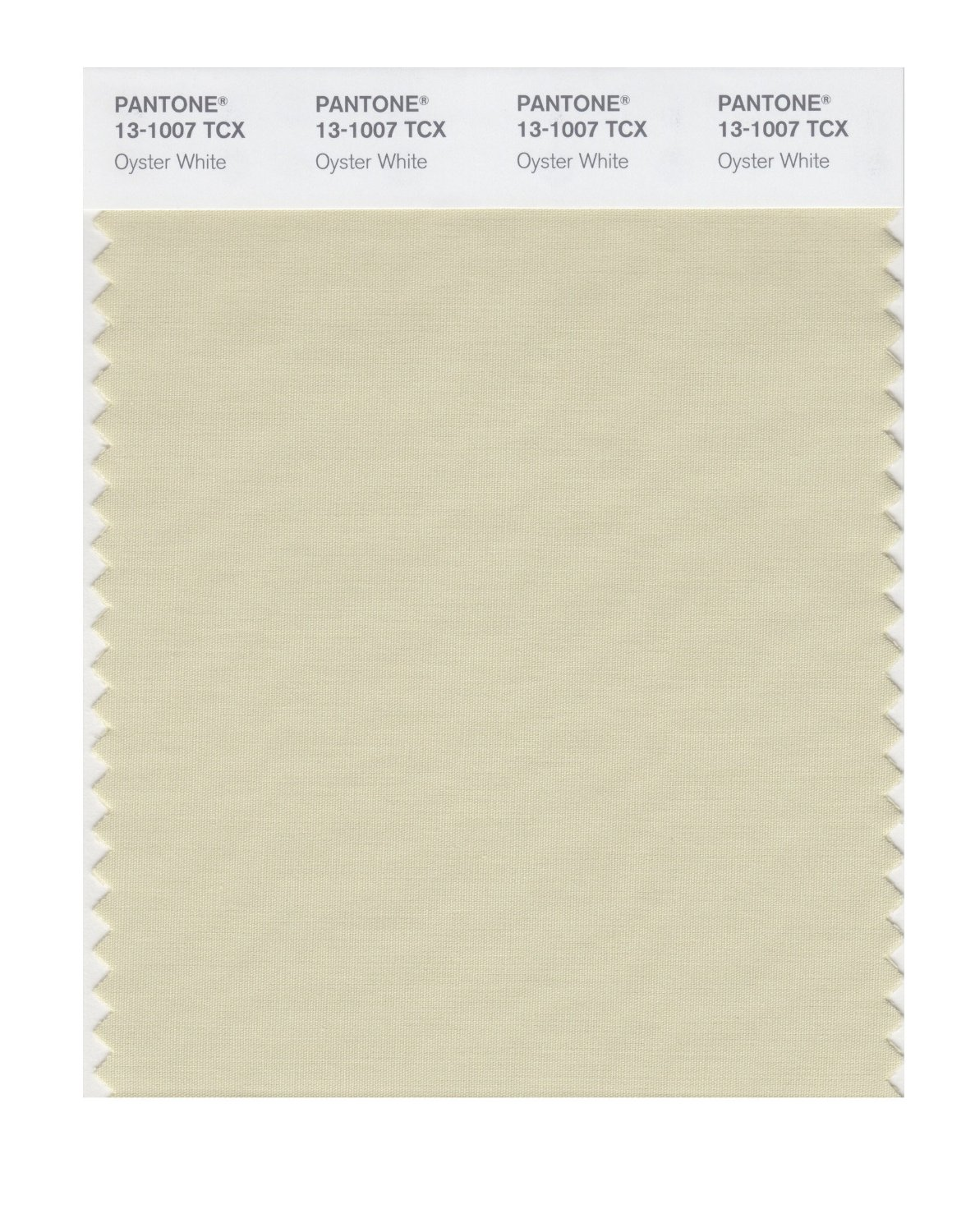 Pantone Smart Swatch 13-1007 Oyster White