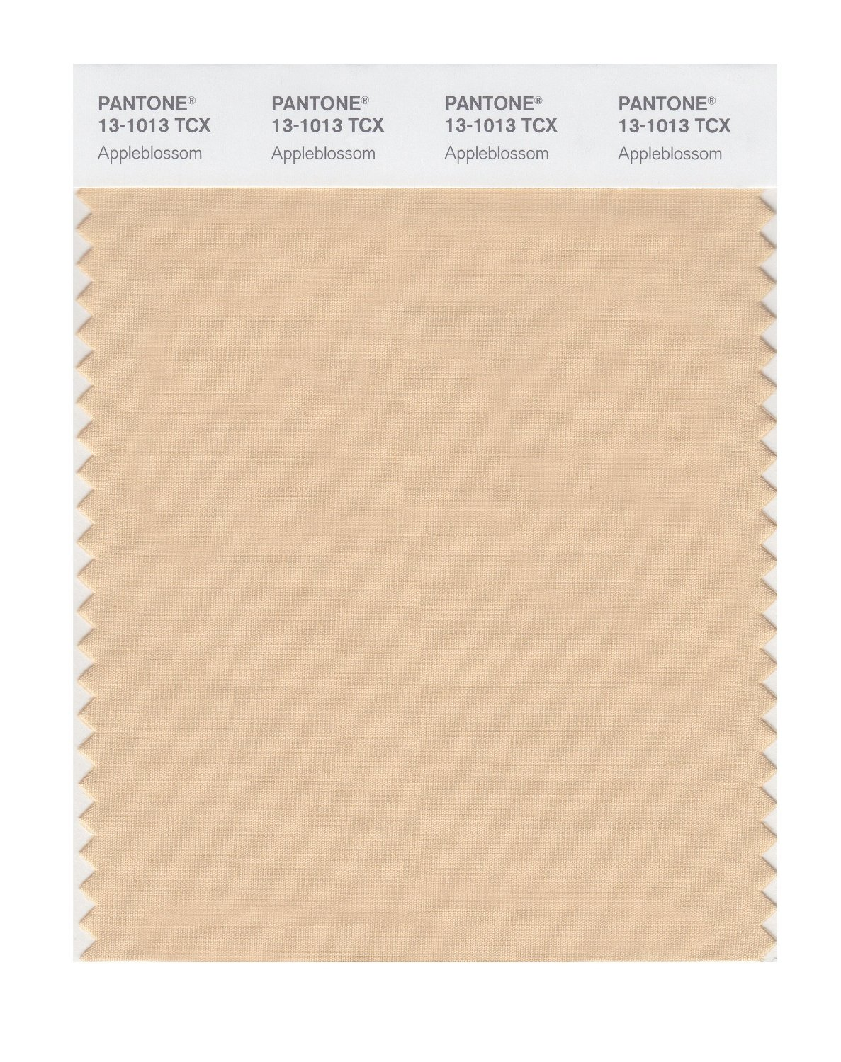 Pantone Smart Swatch 13-1013 Appleblossom