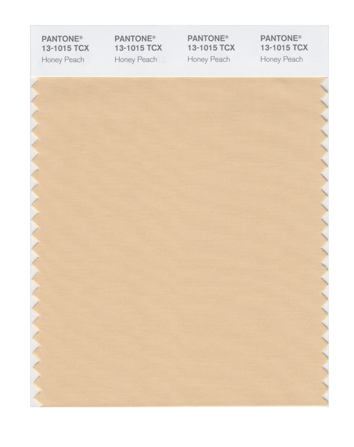 Pantone Smart Swatch 13-1015 Honey Peach