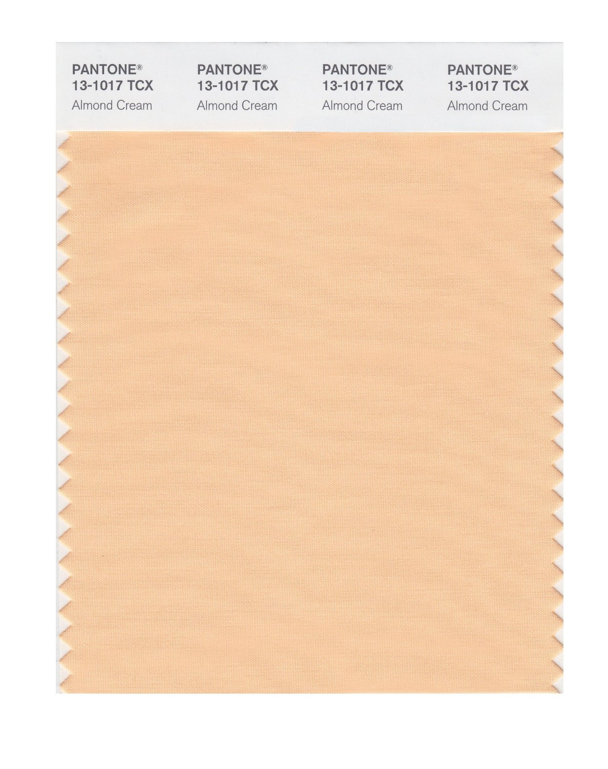 Pantone Smart Swatch 13-1017 Almond Cream