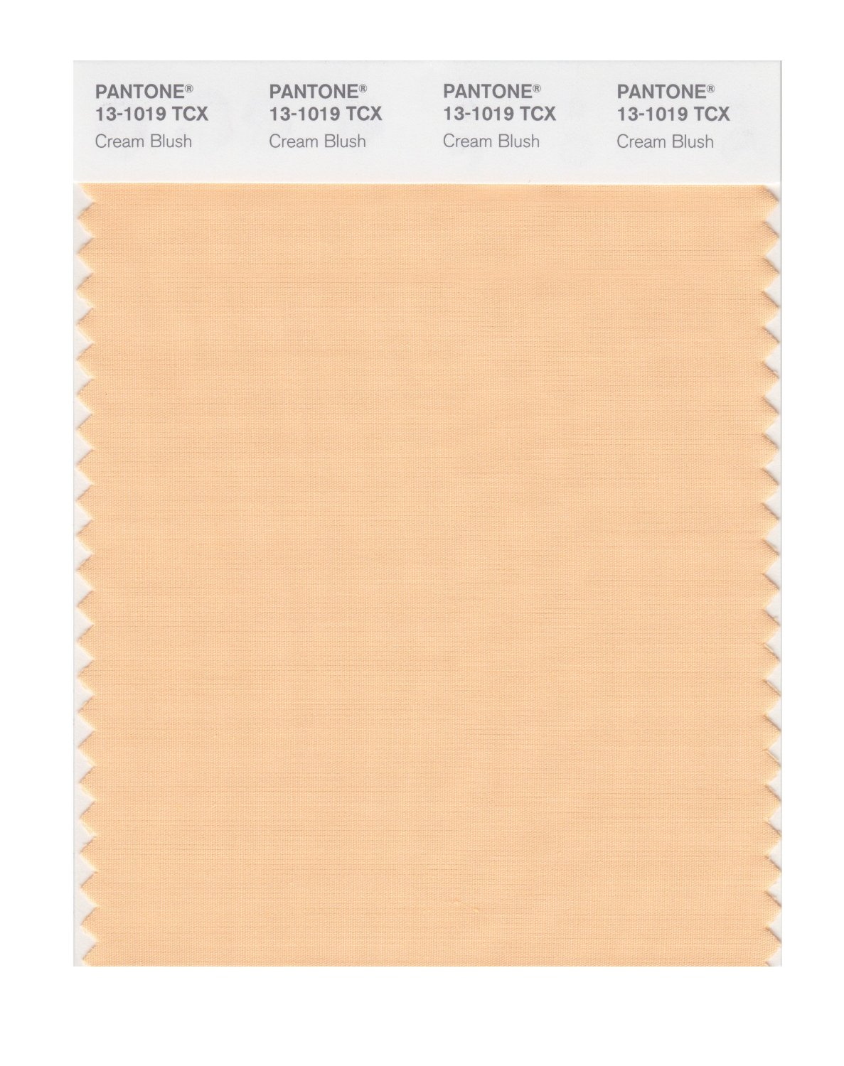 Pantone Smart Swatch 13-1019 Cream Blush