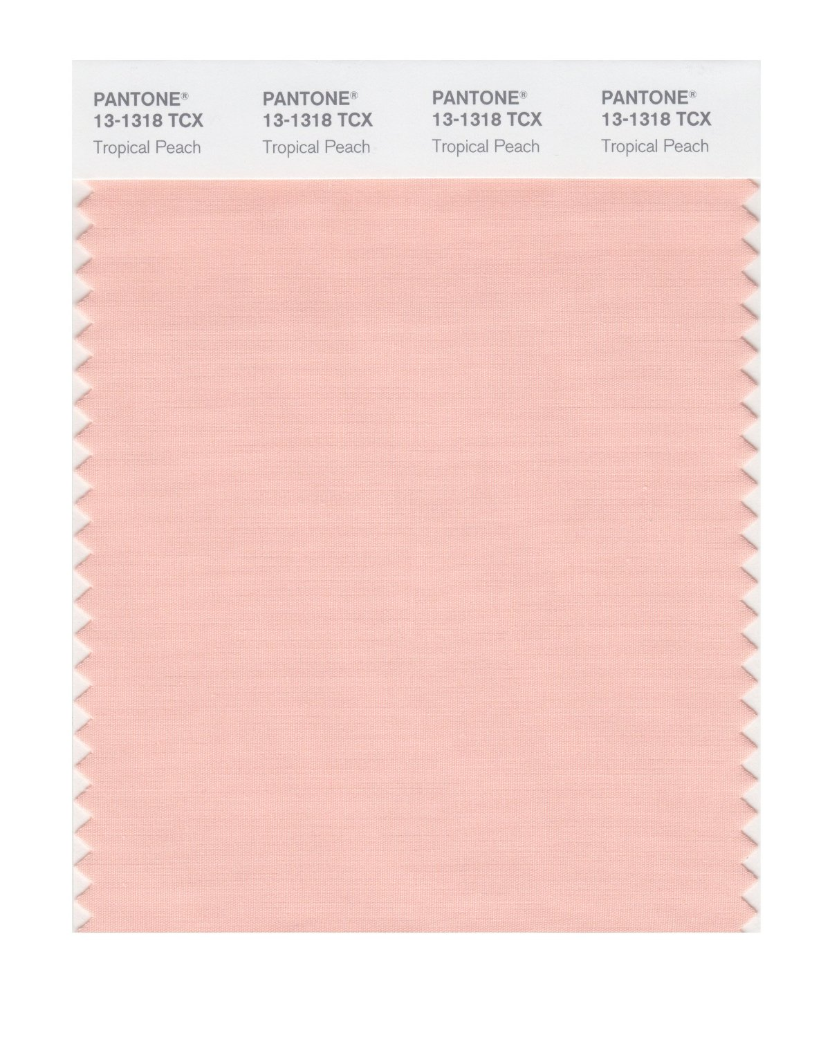 Pantone Smart Swatch 13-1318 Tropical Peach