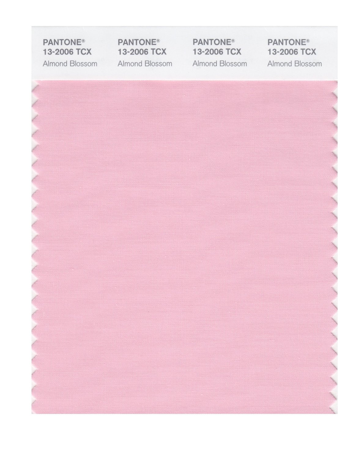 Pantone Smart Swatch 13-2006 Almond Blossom