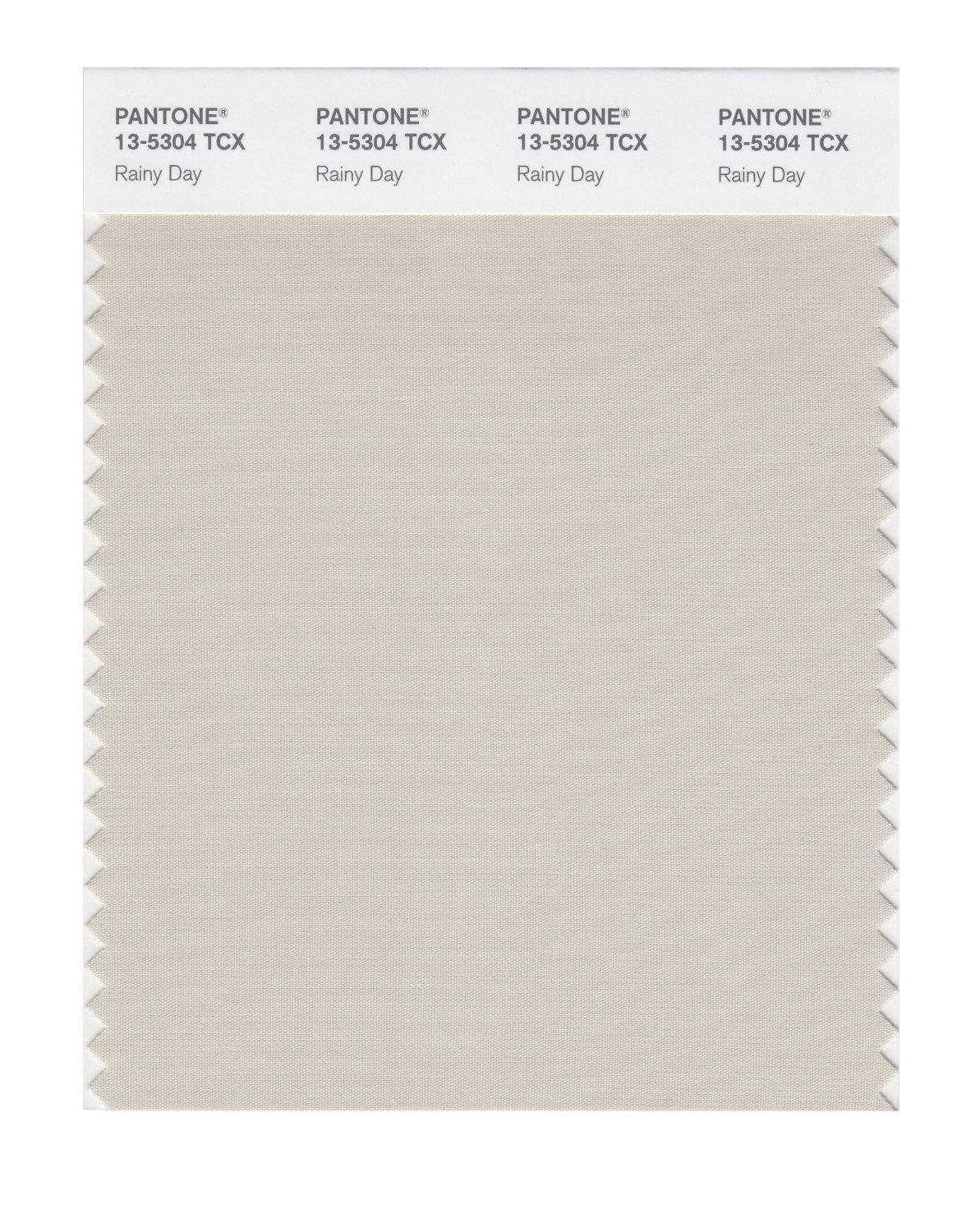 Pantone Smart Swatch 13-5304 Rainy Day