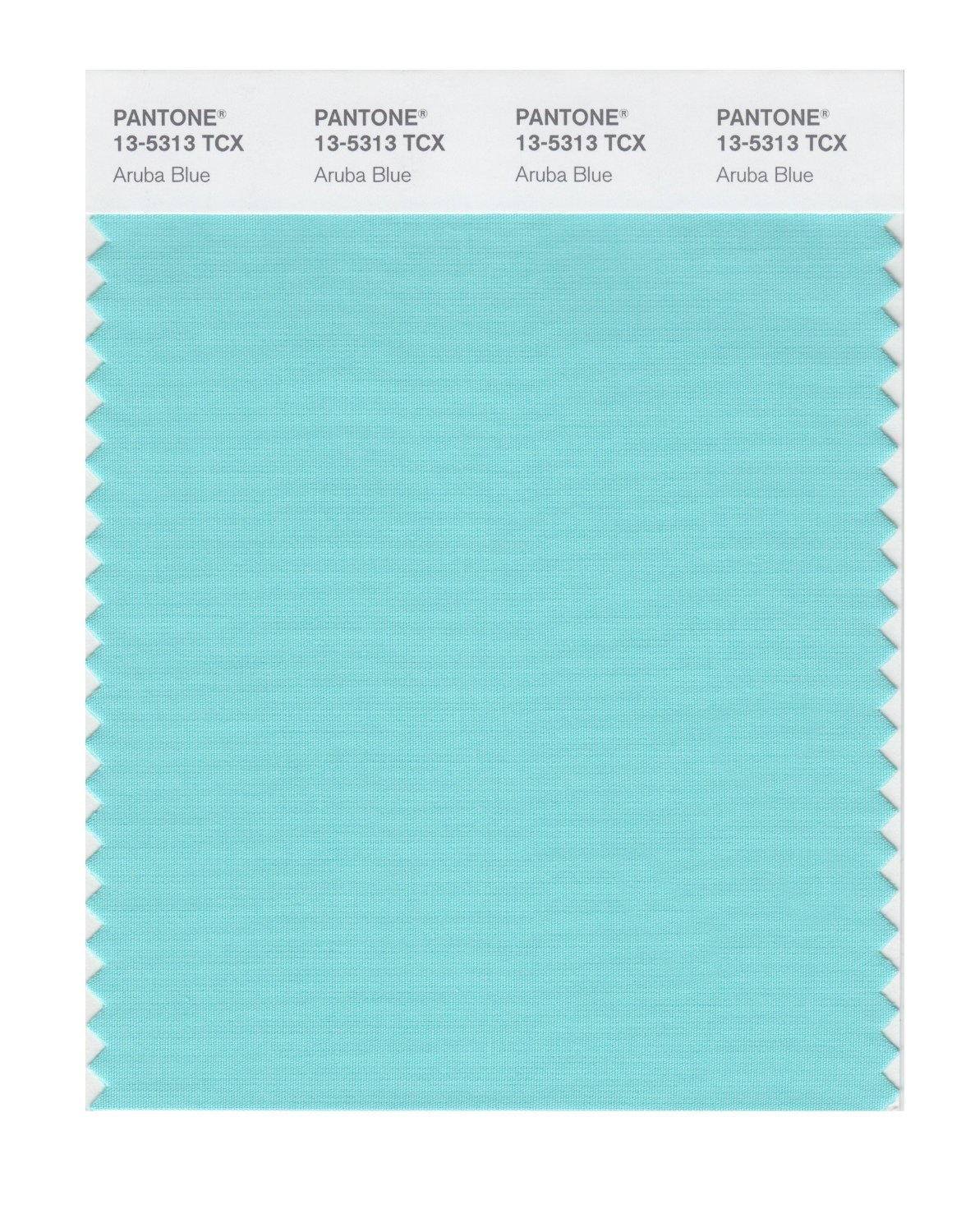 Pantone Smart Swatch 13-5313 Aruba Blue