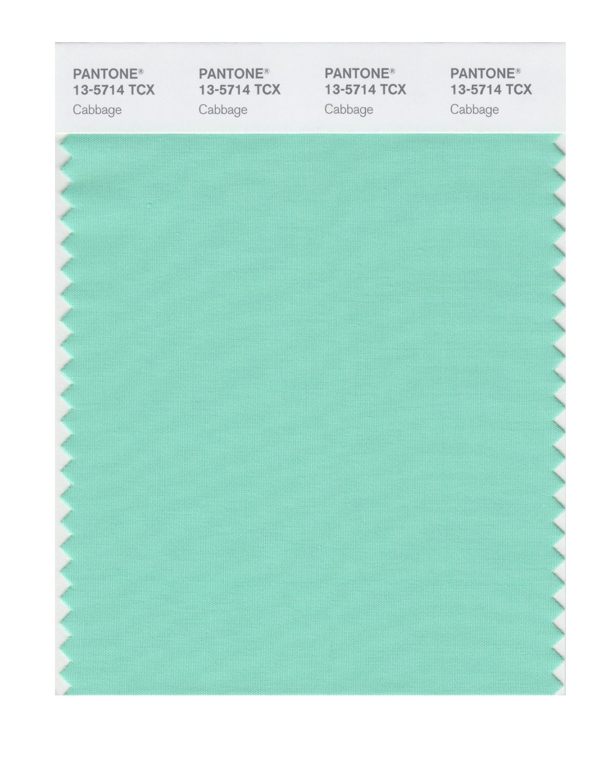 Pantone Smart Swatch 13-5714 Cabbage