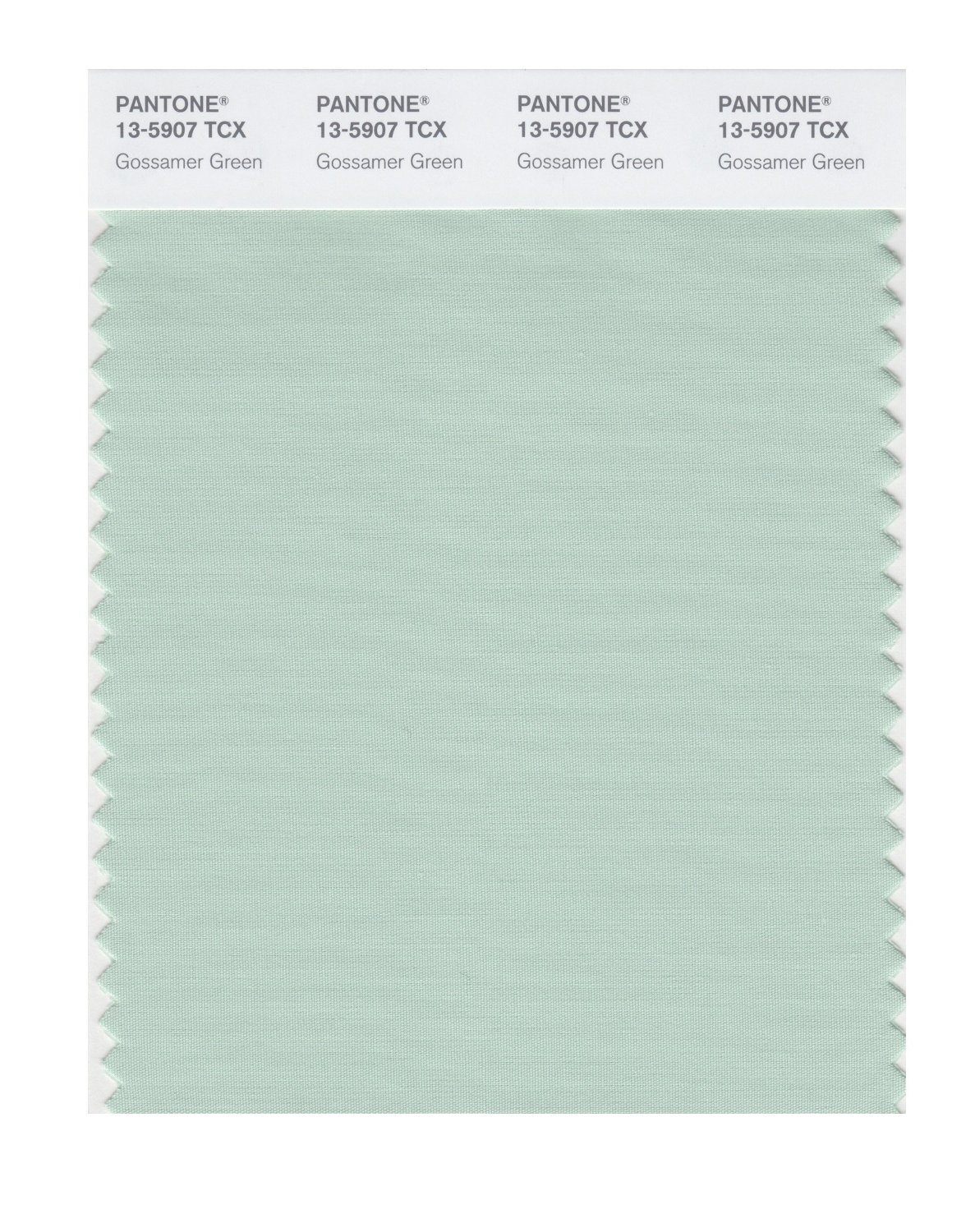 Pantone Smart Swatch 13-5907 Gossamer Green