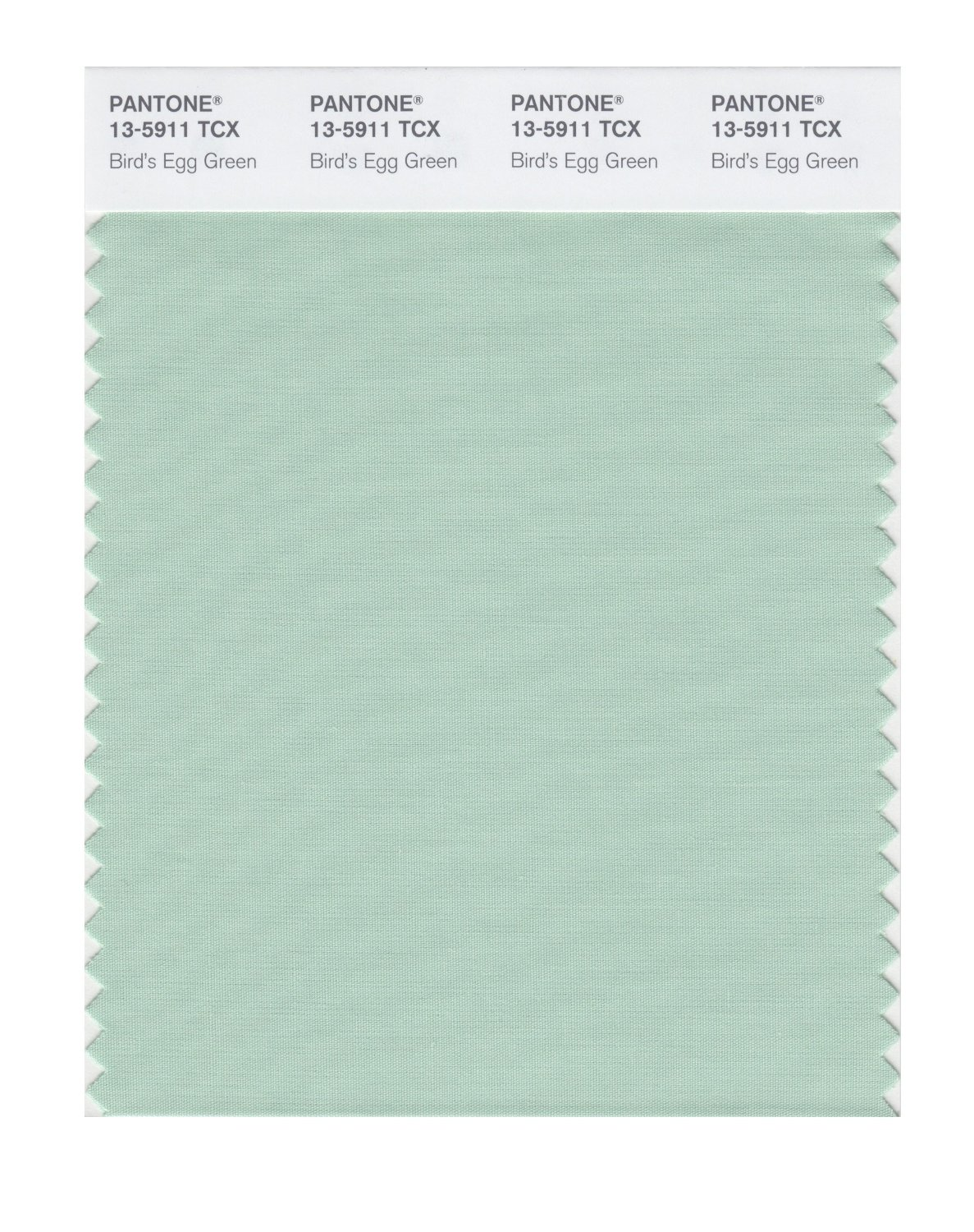 Pantone Smart Swatch 13-5911 Bird's Egg Green