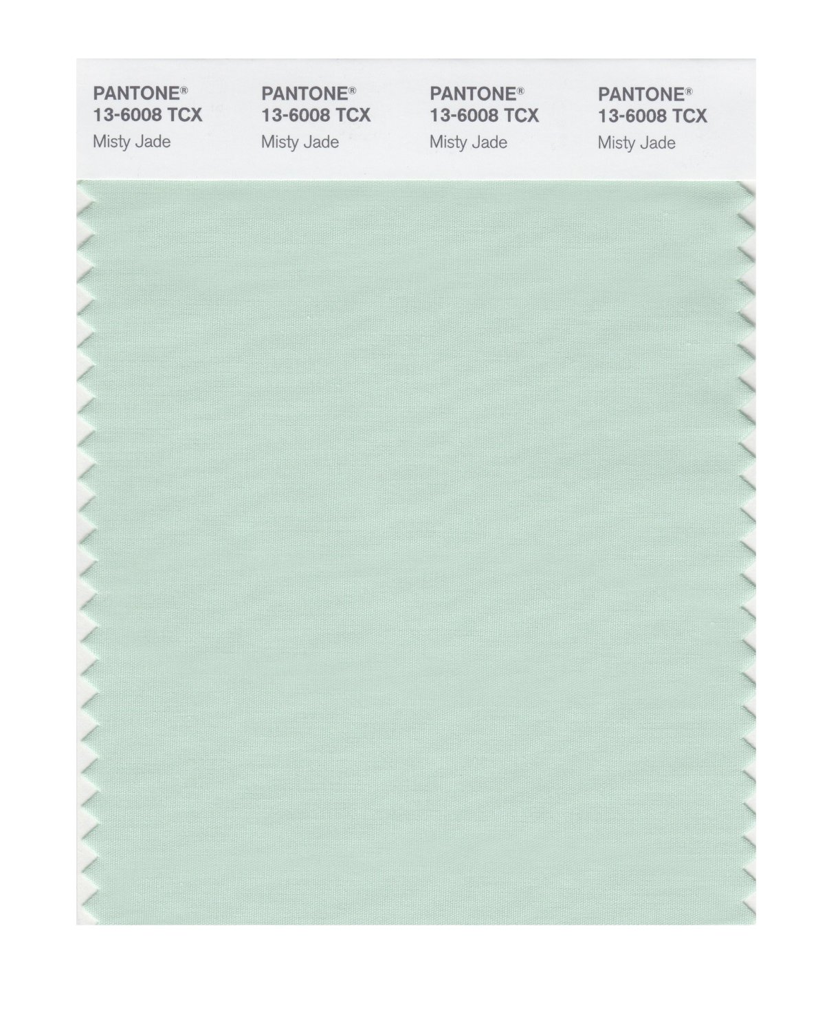 Pantone Smart Swatch 13-6008 Misty Jade