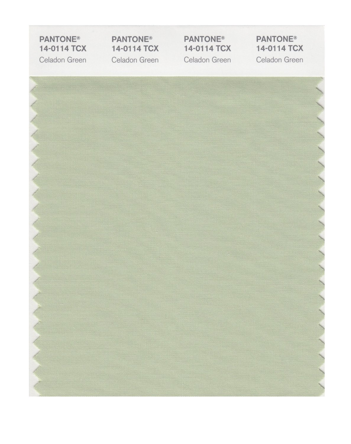 Pantone Smart Swatch 14-0114 Celadon Green