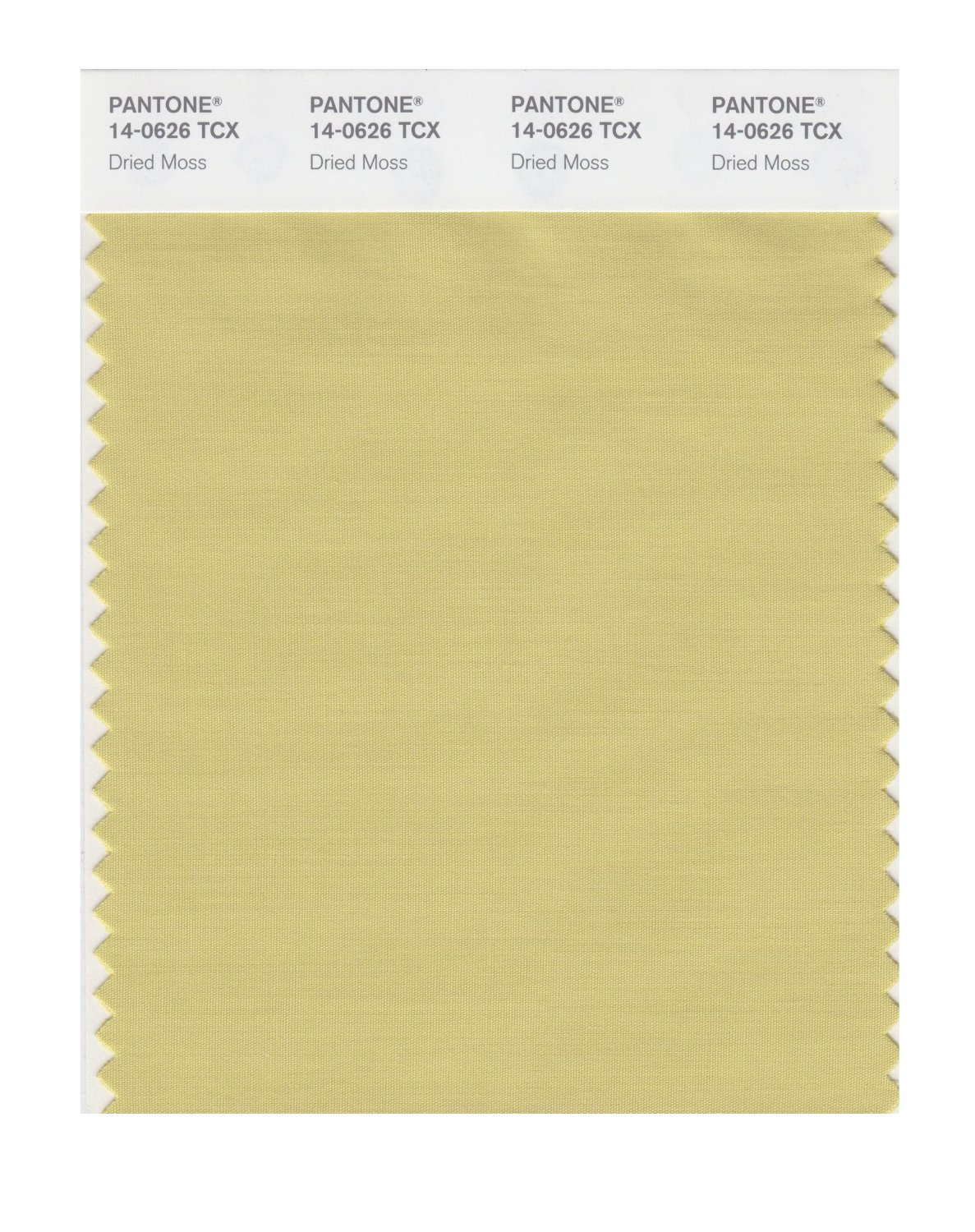 Pantone Smart Swatch 14-0626 Dried Moss