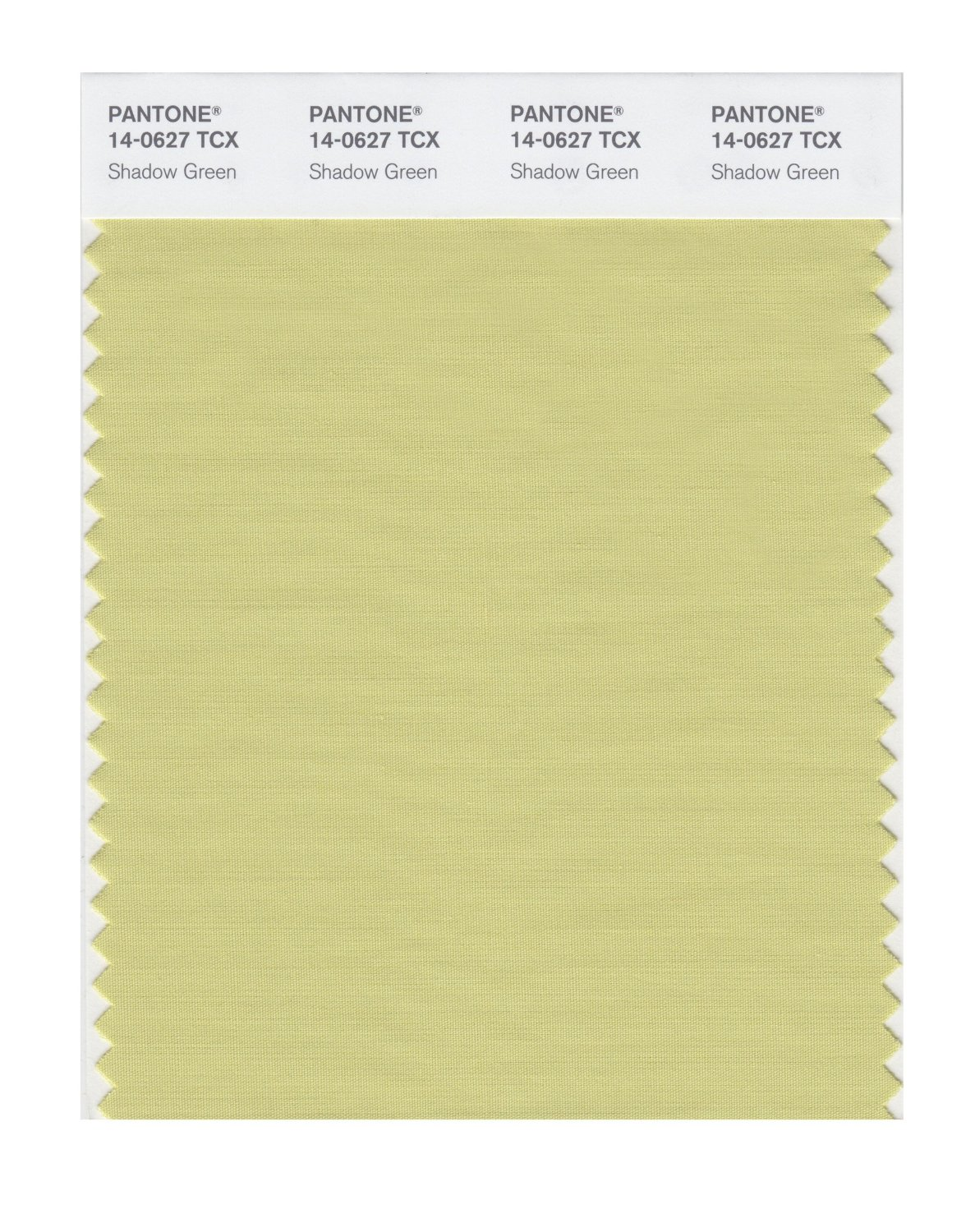 Pantone Smart Swatch 14-0627 Shadow Green