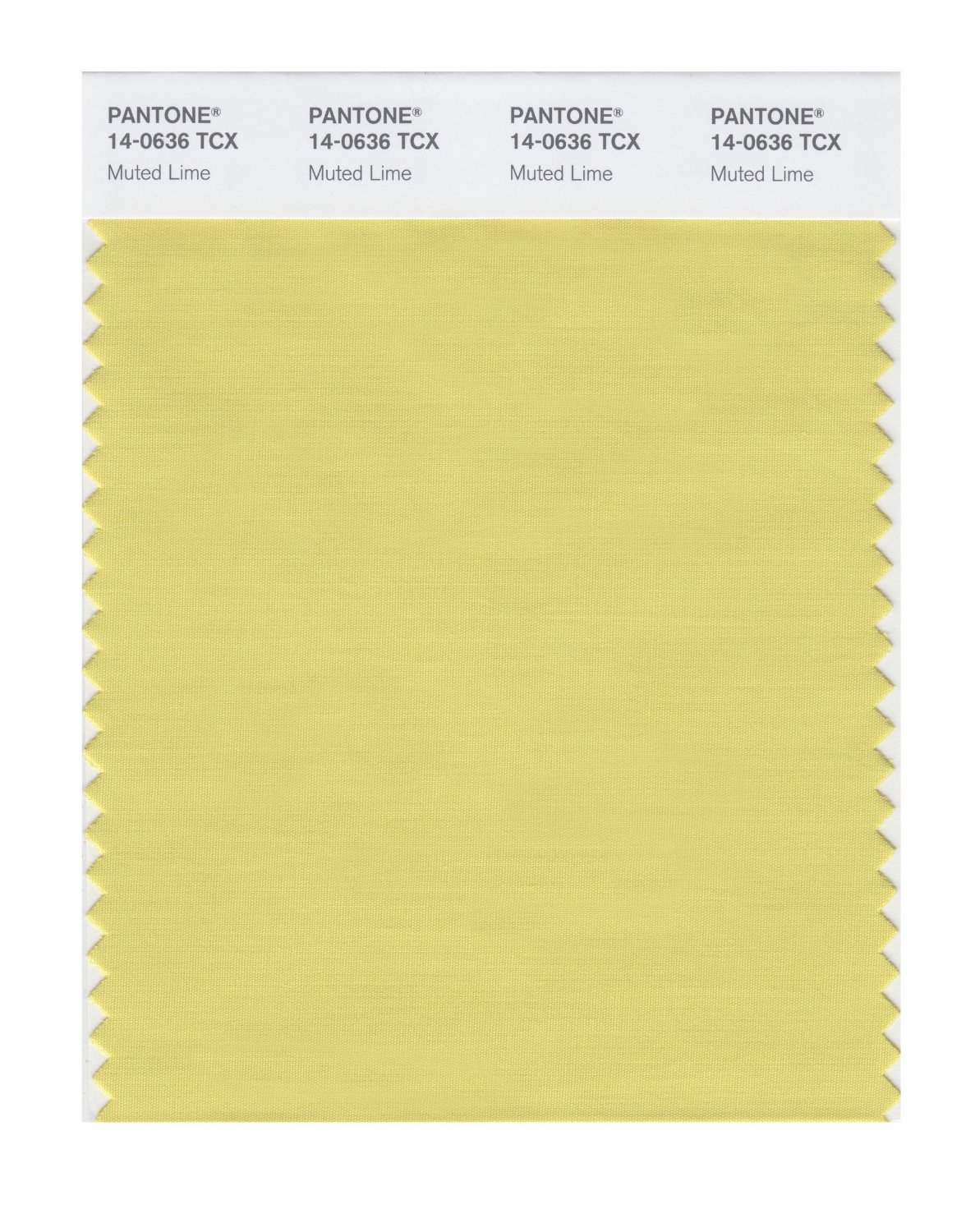 Pantone Smart Swatch 14-0636 Muted Lime