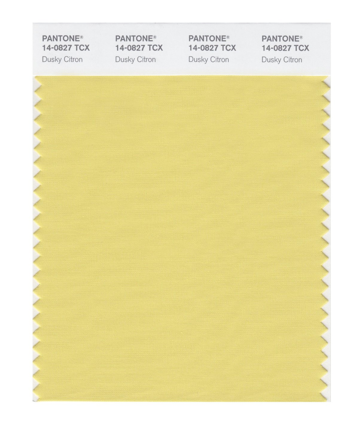 Pantone Smart Swatch 14-0827 Dusky Citron