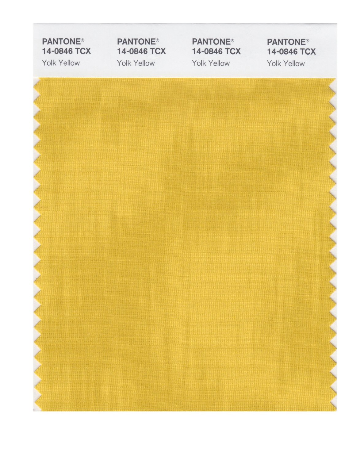 Pantone Smart Swatch 14-0846 Yolk Yellow