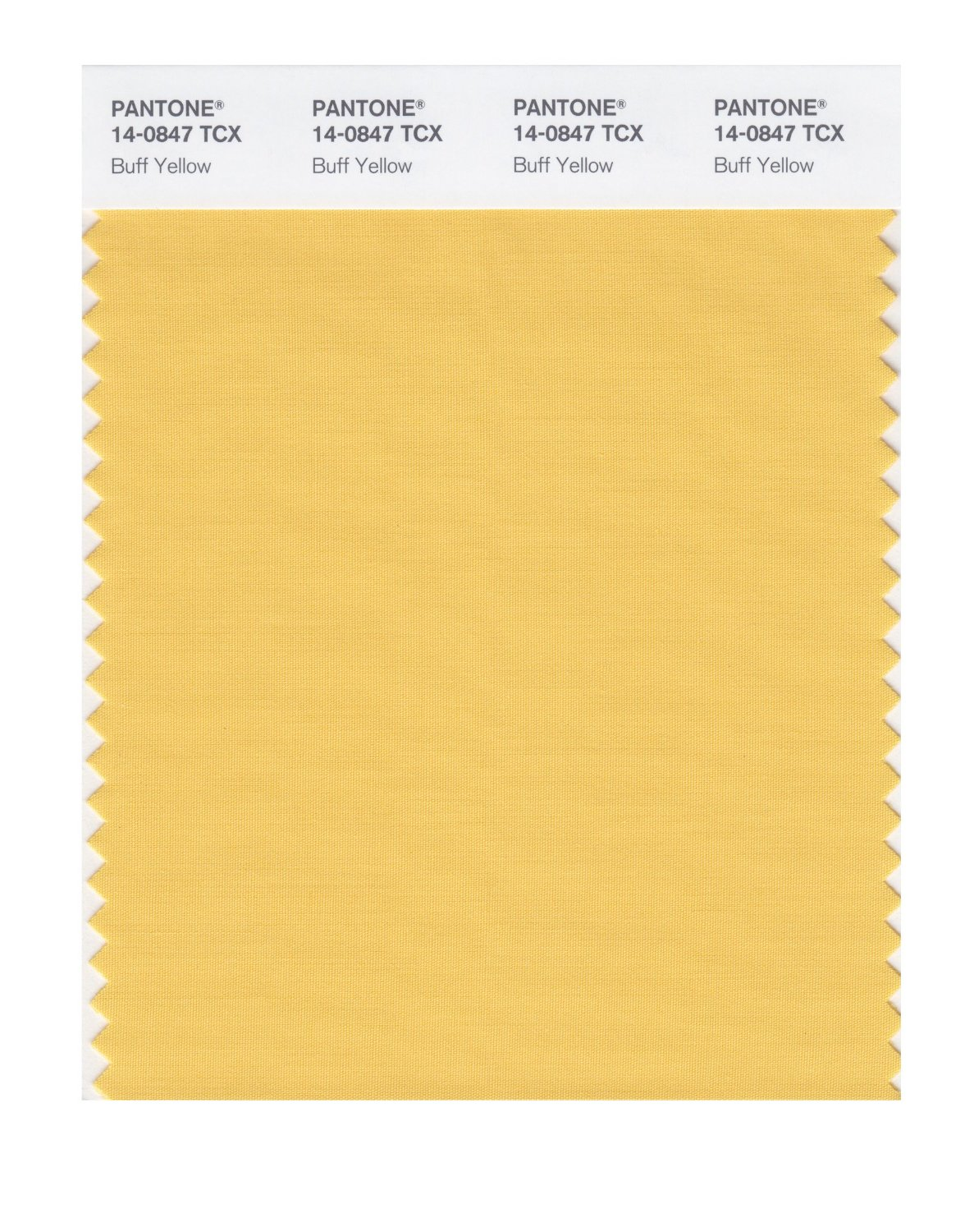 Pantone Smart Swatch 14-0847 Buff Yellow