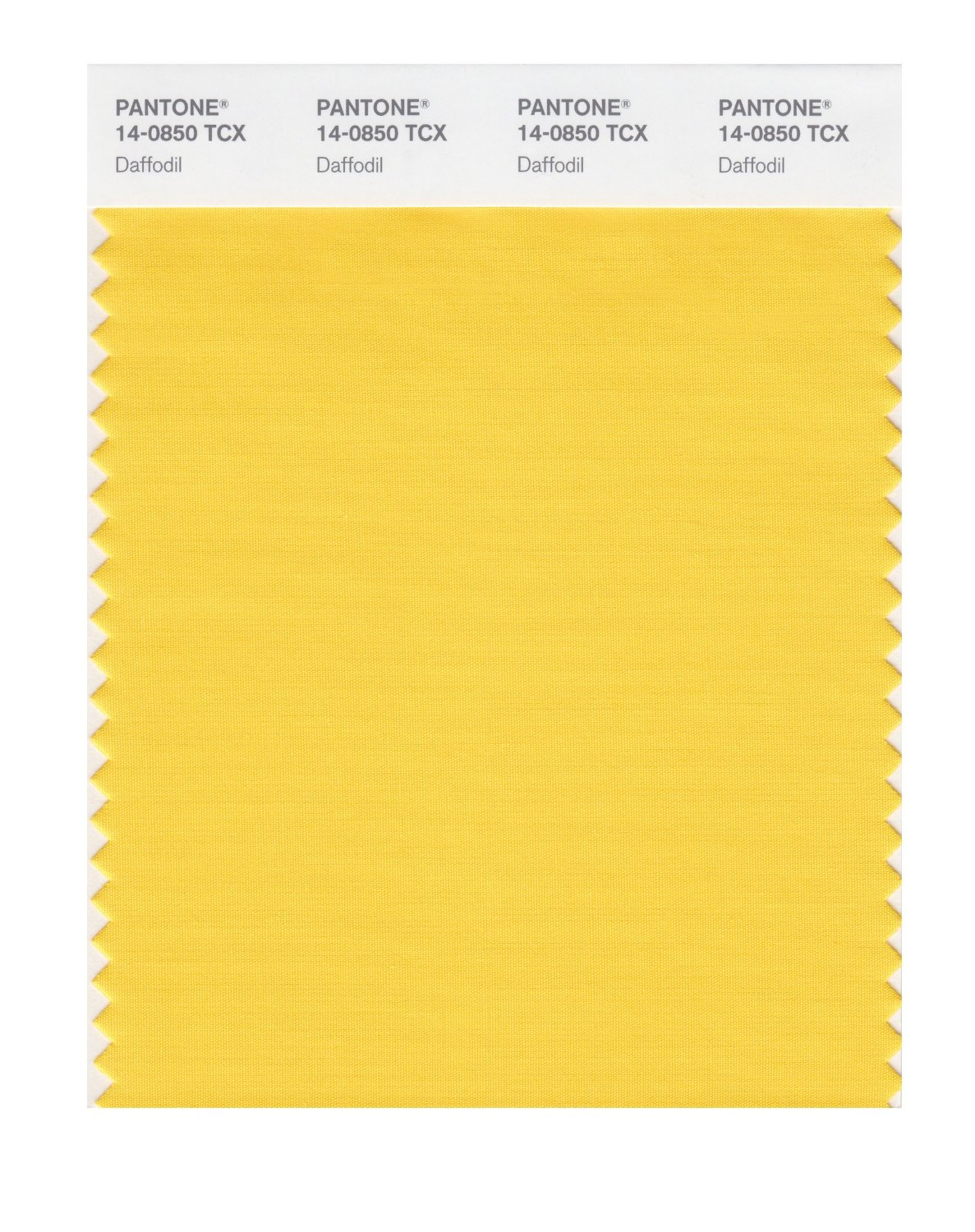 Pantone Smart Swatch 14-0850 Daffodil