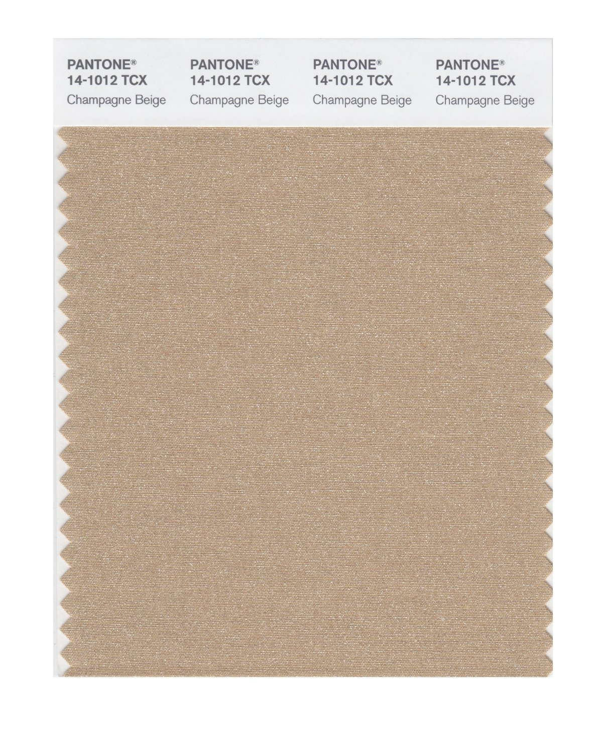 Pantone Smart Swatch 14-1012 Champagne Beige