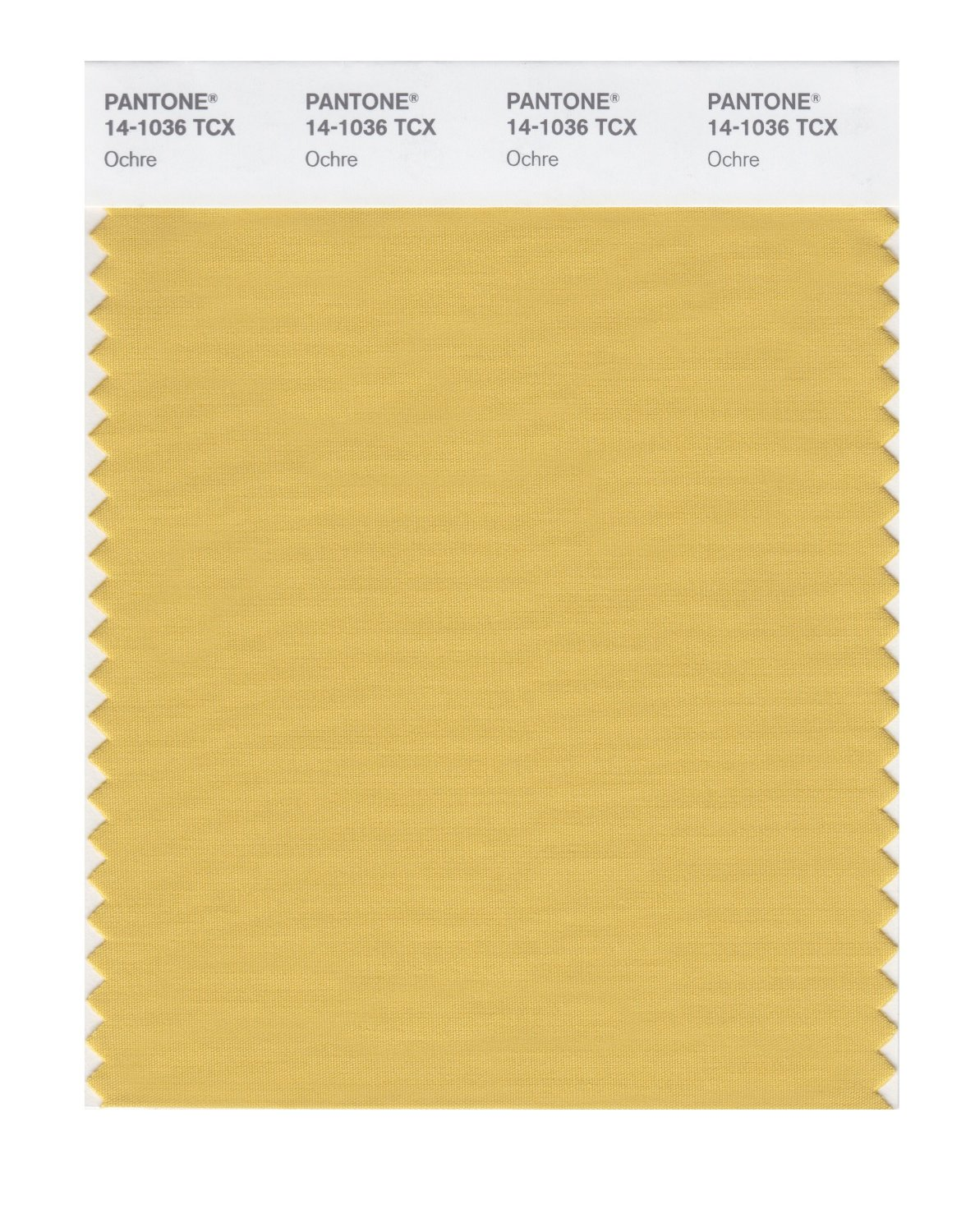 Pantone Smart Swatch 14-1036 Ochre