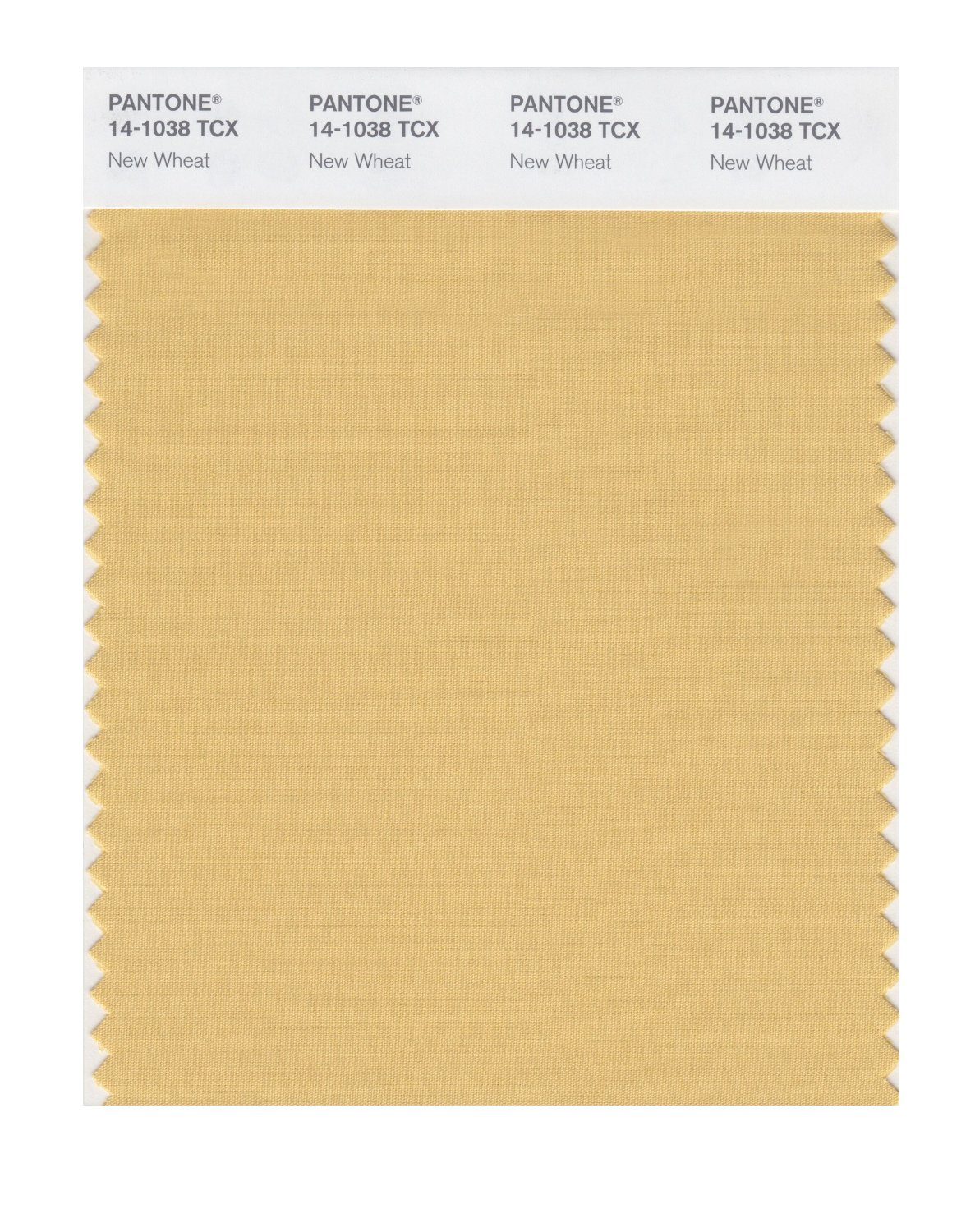 Pantone Smart Swatch 14-1038 New Wheat