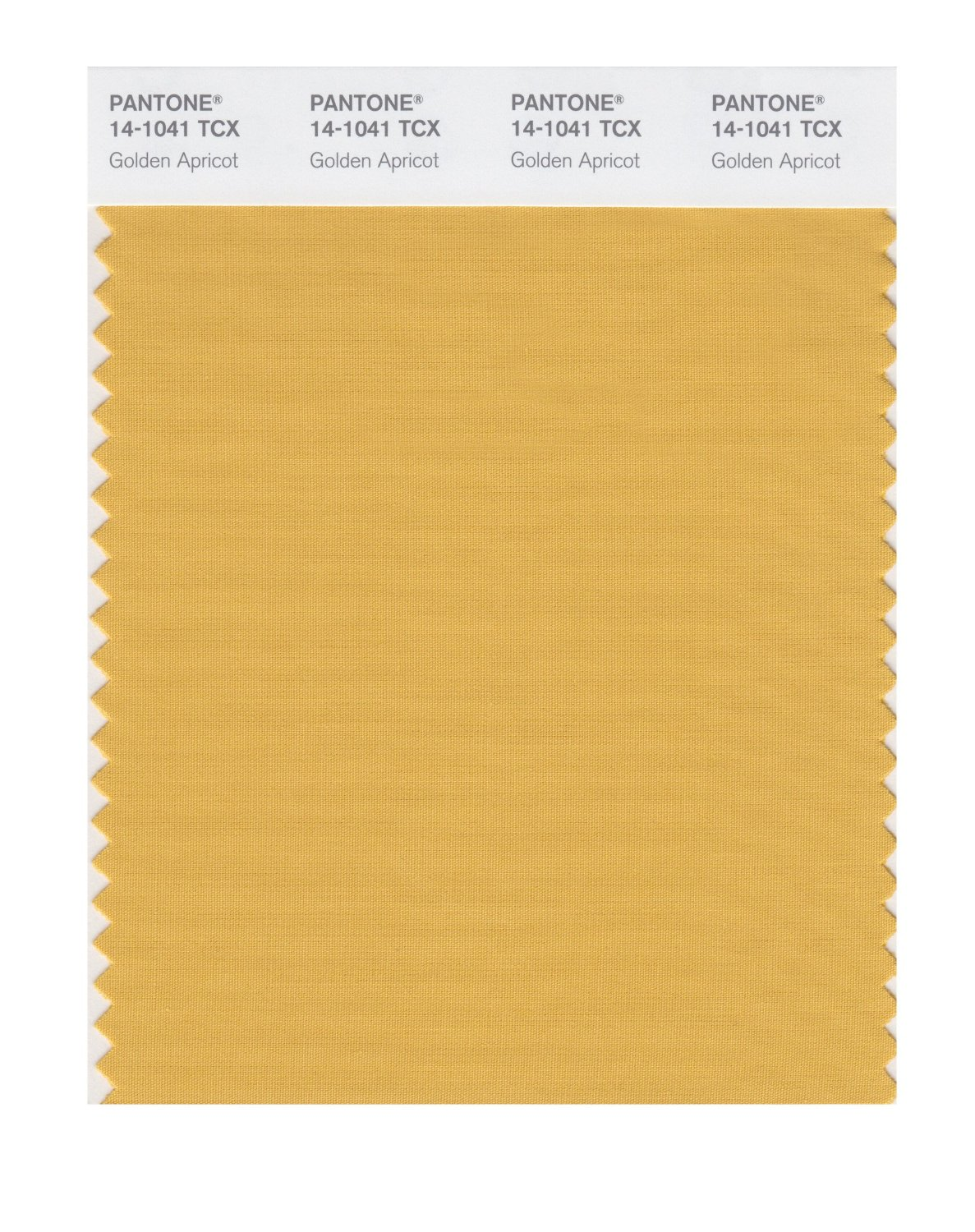 Pantone Smart Swatch 14-1041 Golden Apricot