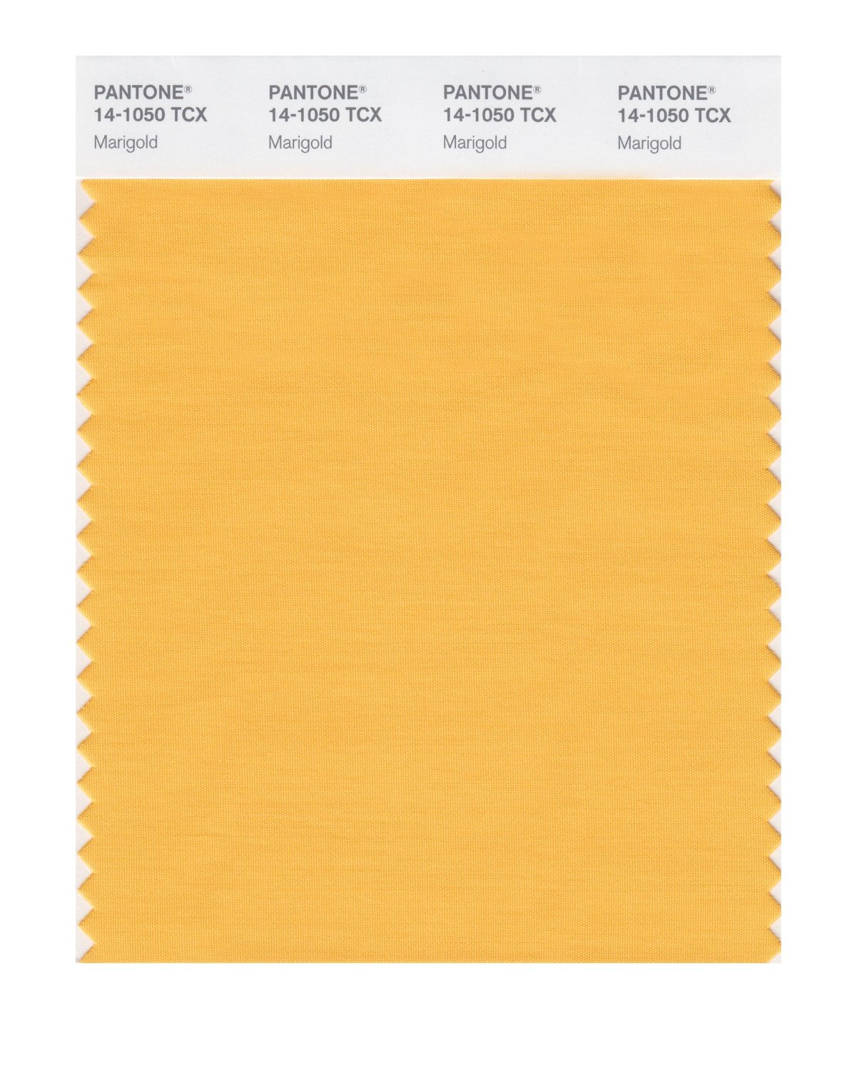 Pantone Smart Swatch 14-1050 Marigold
