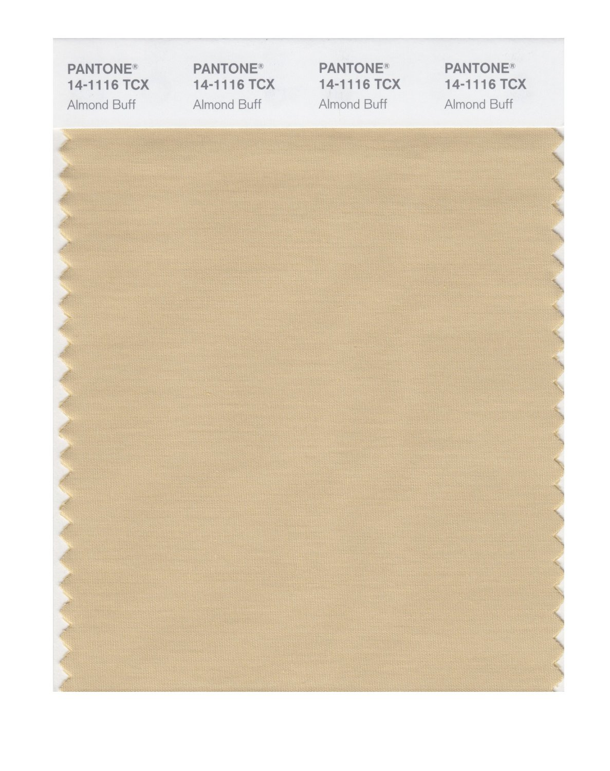 Pantone Smart Swatch 14-1116 Almond Buff